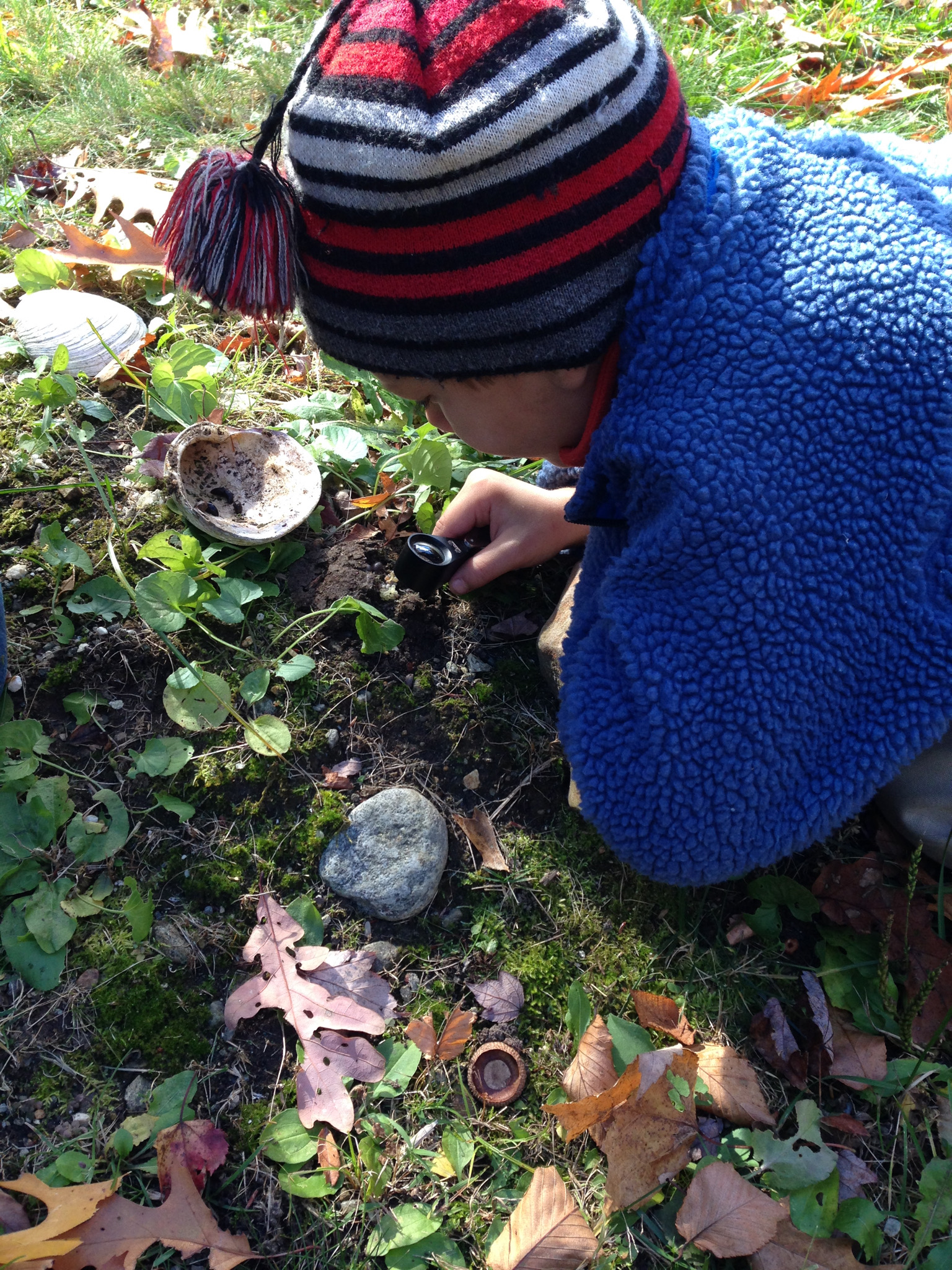 Kunsang and Silas discovered some eggs,. After close inspection, they noted adult and baby slugs close by.