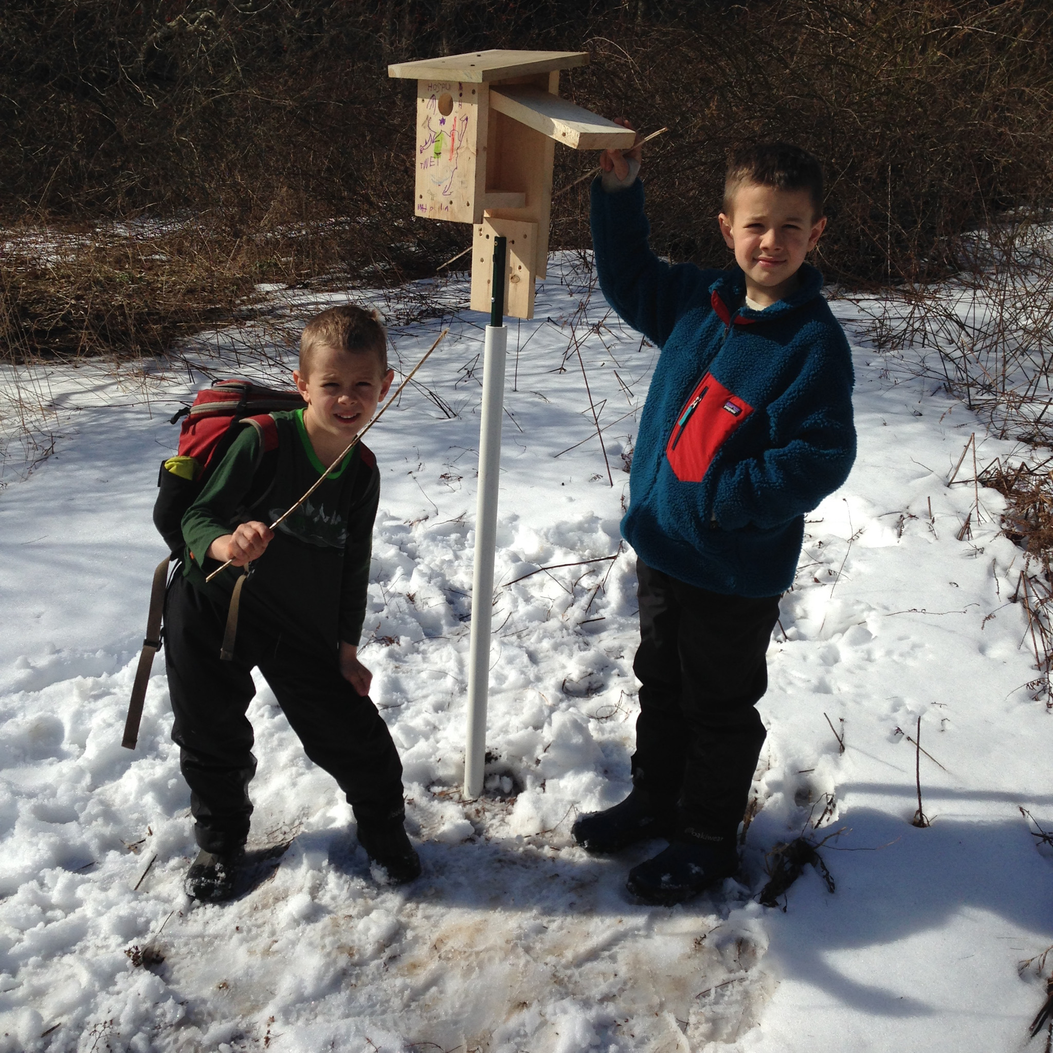 The first box went up in February in the Bee Fishing Field.