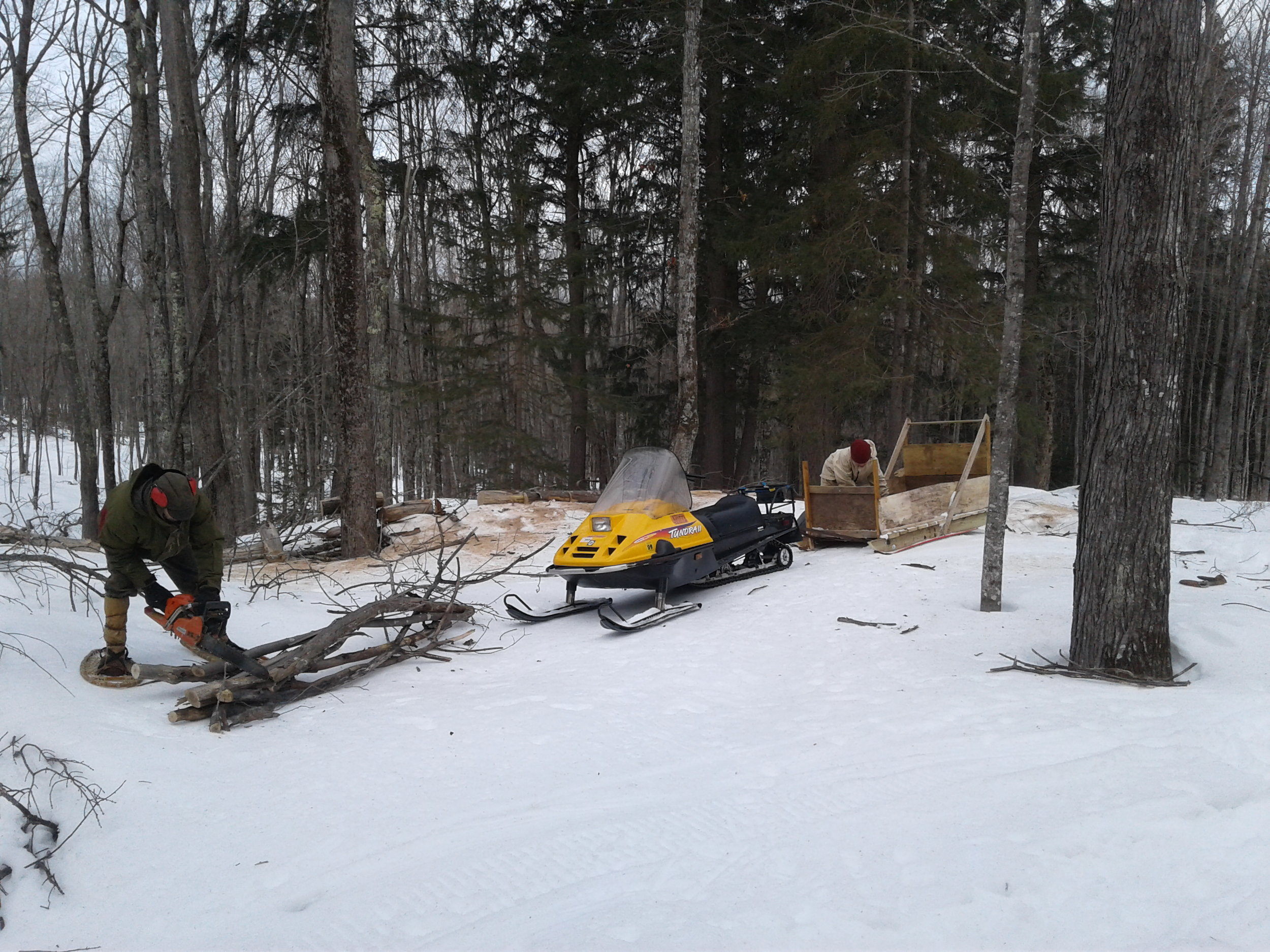 Jan cutting wood on snowshoes