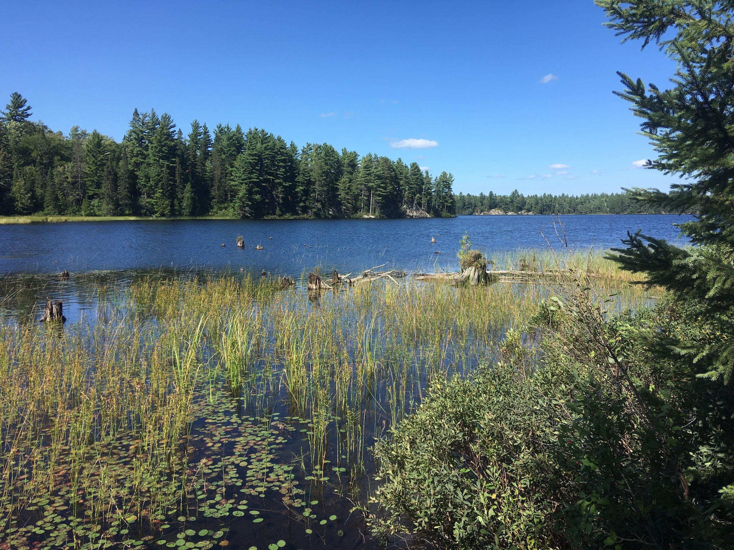 Bull Dog Lake