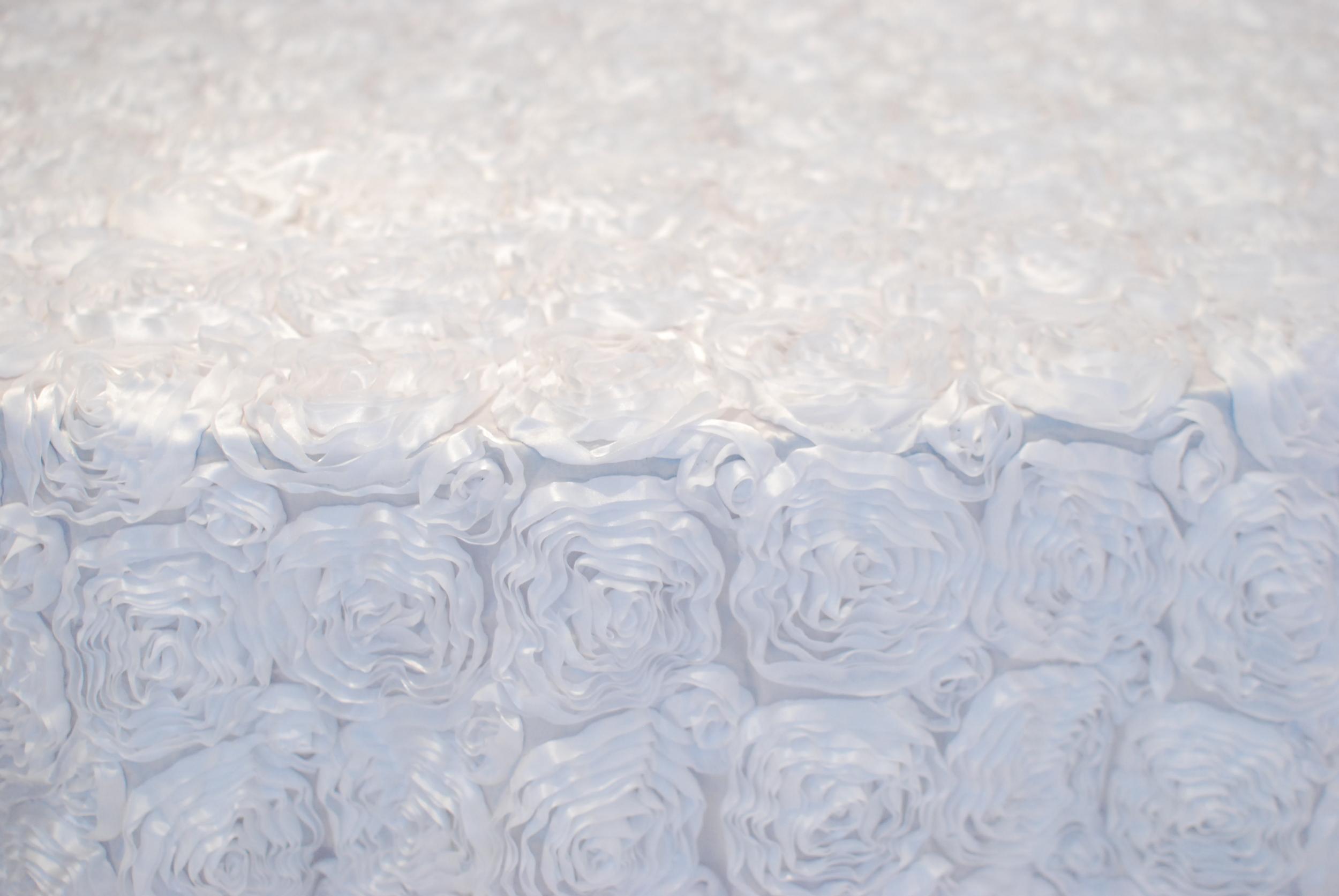 Rosetta - White