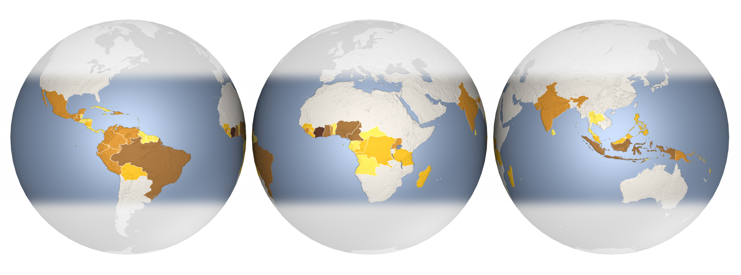 Scientific American - Chocolate globes