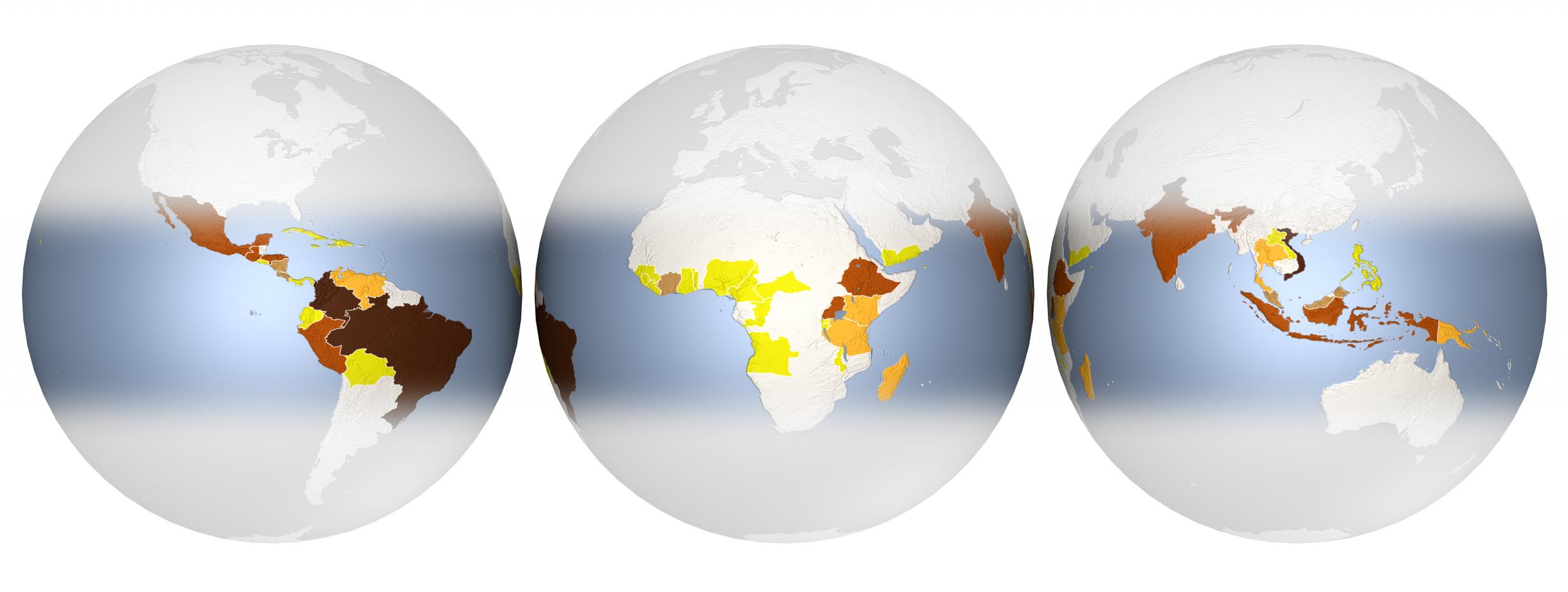 Scientific American - Coffee globes
