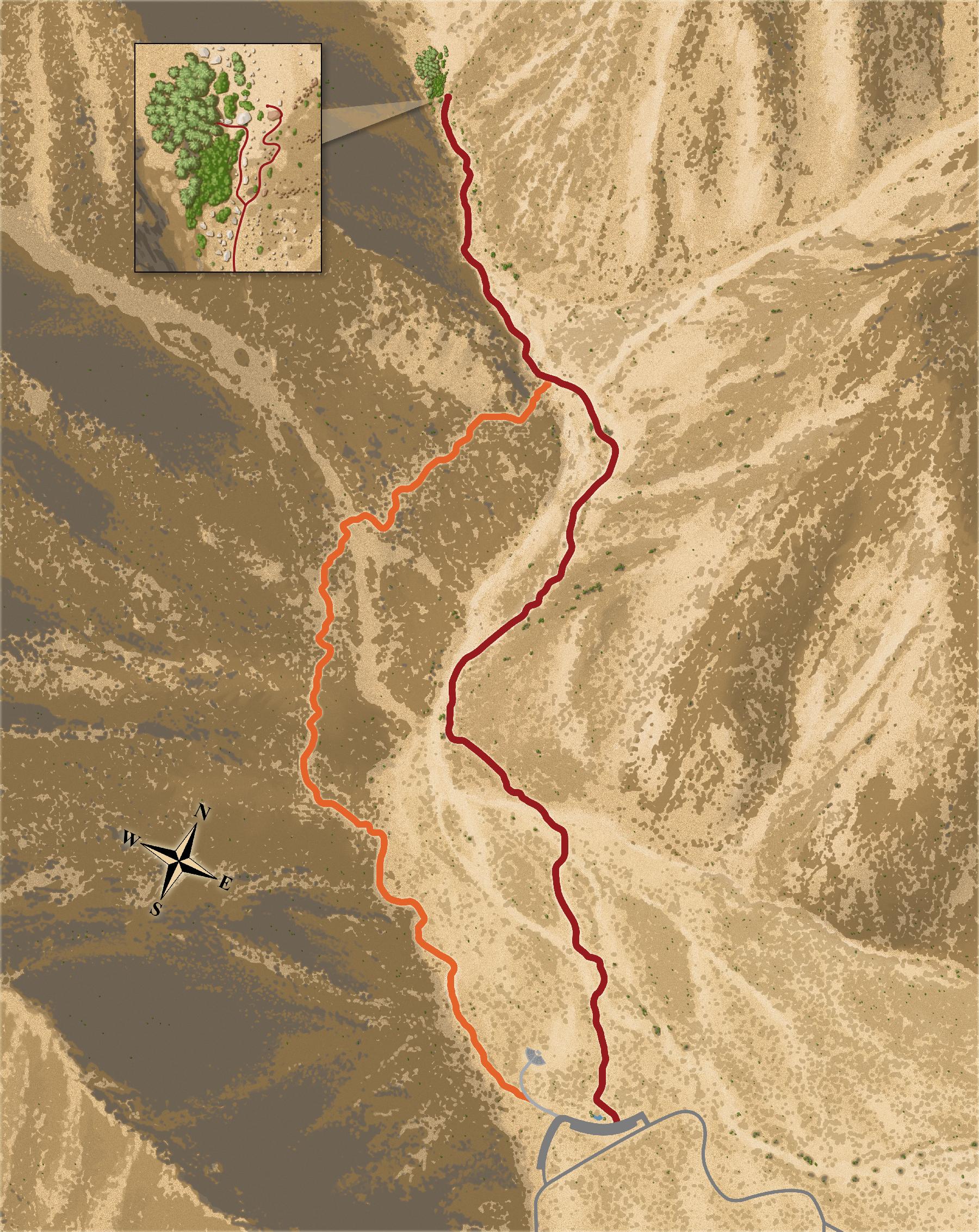 The Acorn Group - Anza-Borrego - Palm Canyon Trail