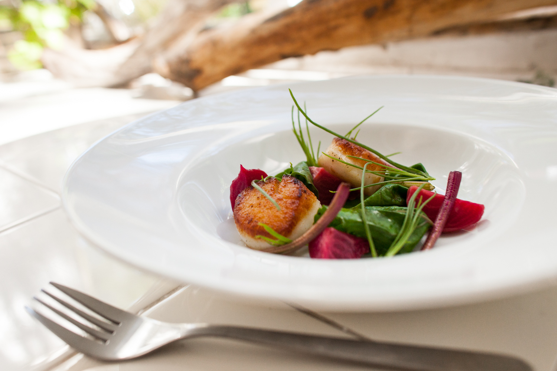 HeatherPhelpsLipton-Food-lifestyle-catskills-43.jpg
