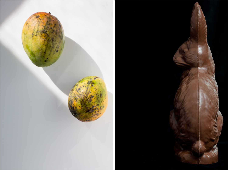 mangoesBunny.jpg
