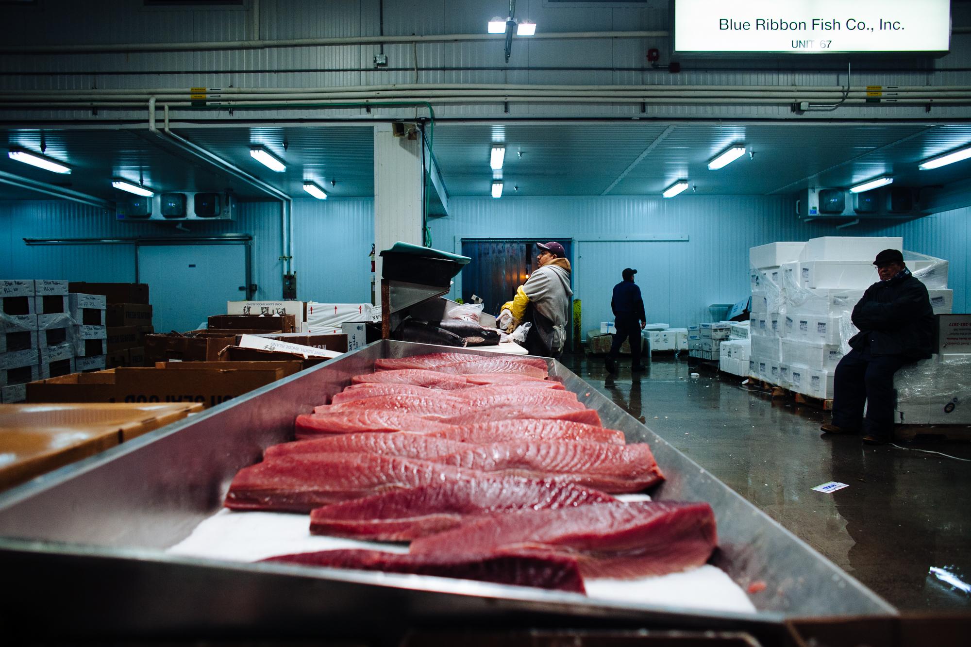 HeatherPhelpsLipton-Fish-HuntsPoint-FultonFishMarket-13.jpg