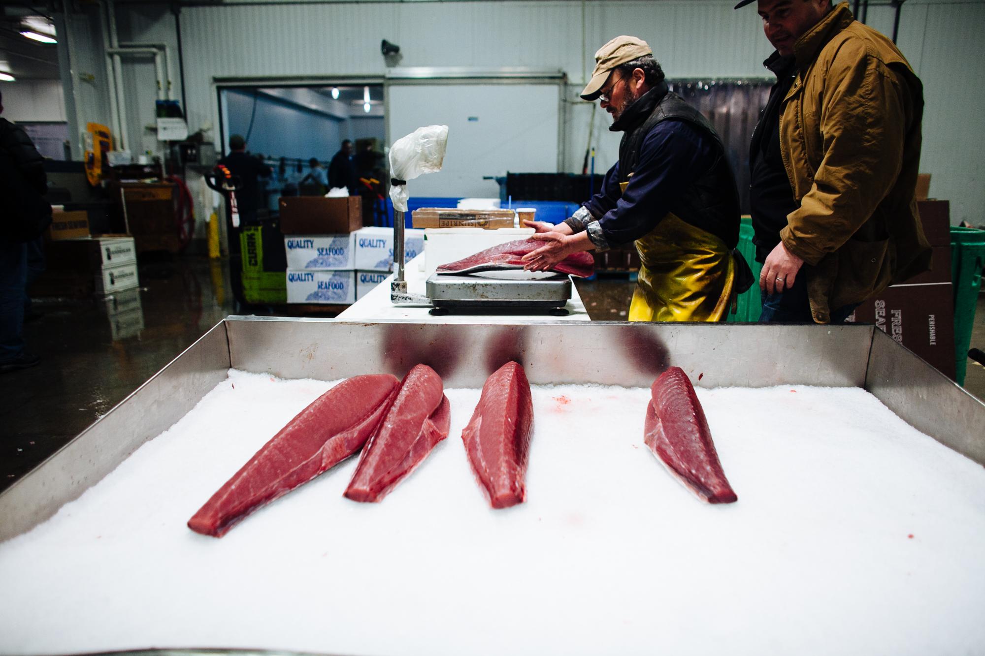 HeatherPhelpsLipton-Fish-HuntsPoint-FultonFishMarket-68.jpg