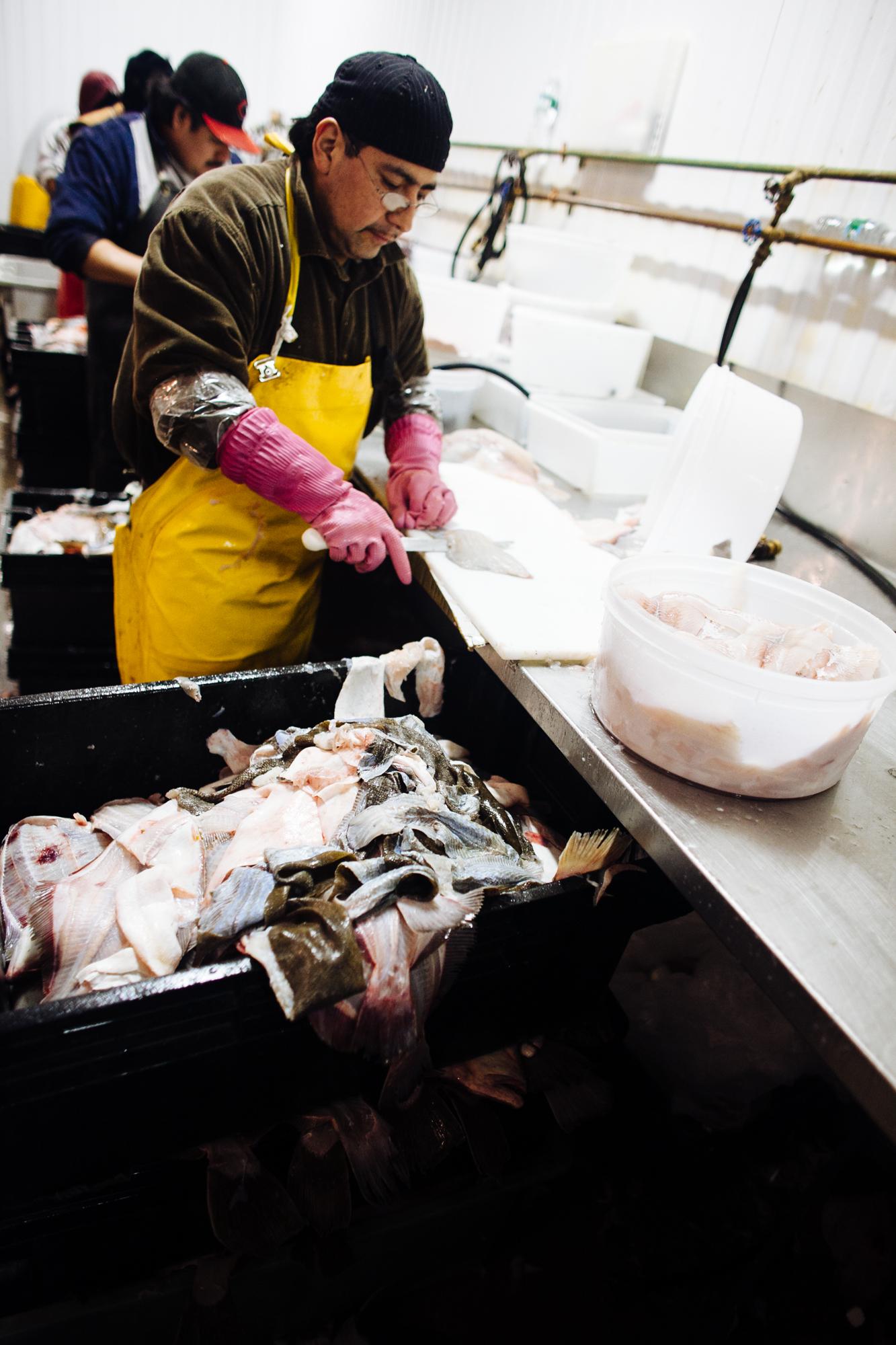 HeatherPhelpsLipton-Fish-HuntsPoint-FultonFishMarket-70.jpg