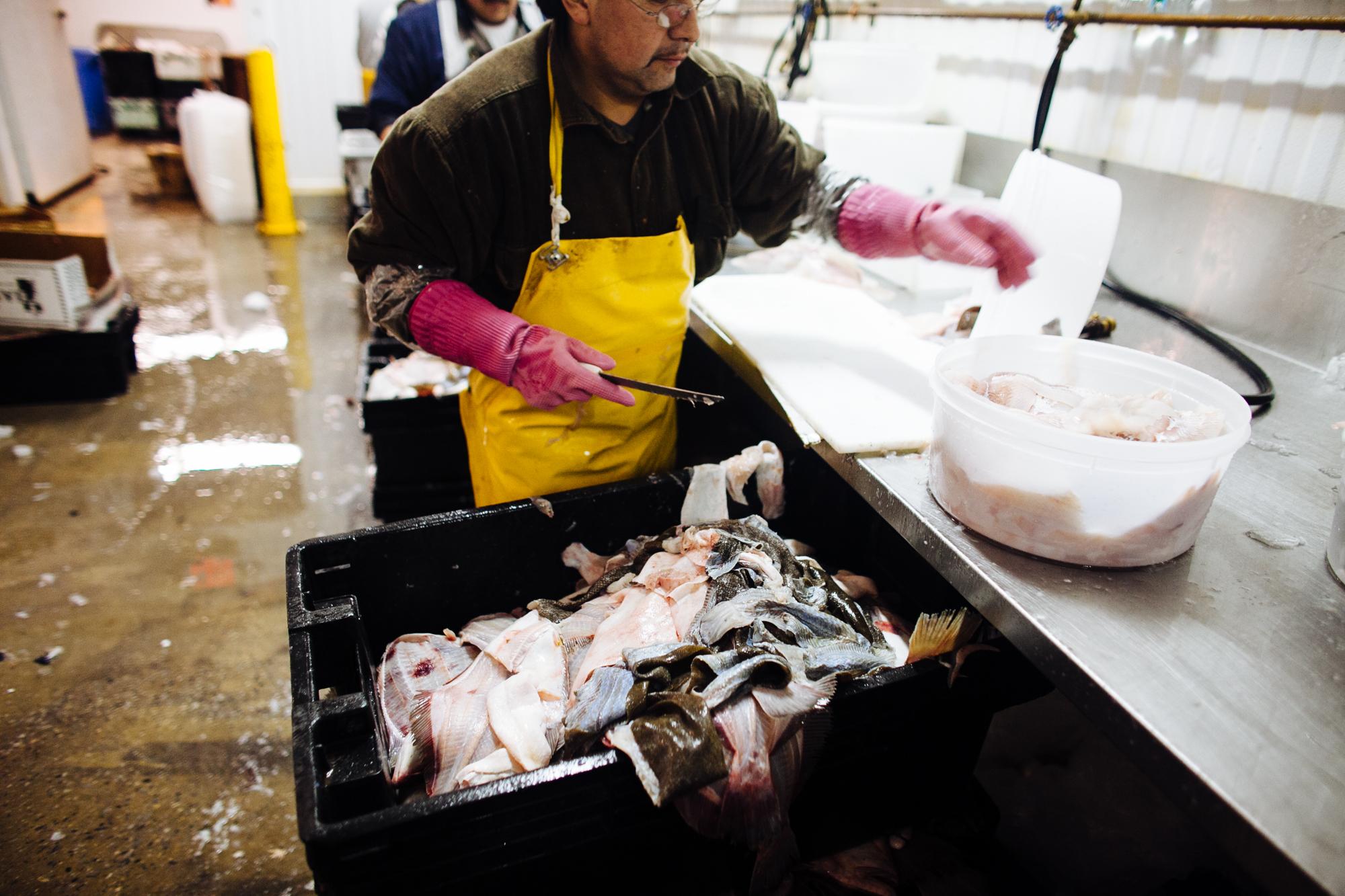 HeatherPhelpsLipton-Fish-HuntsPoint-FultonFishMarket-69.jpg