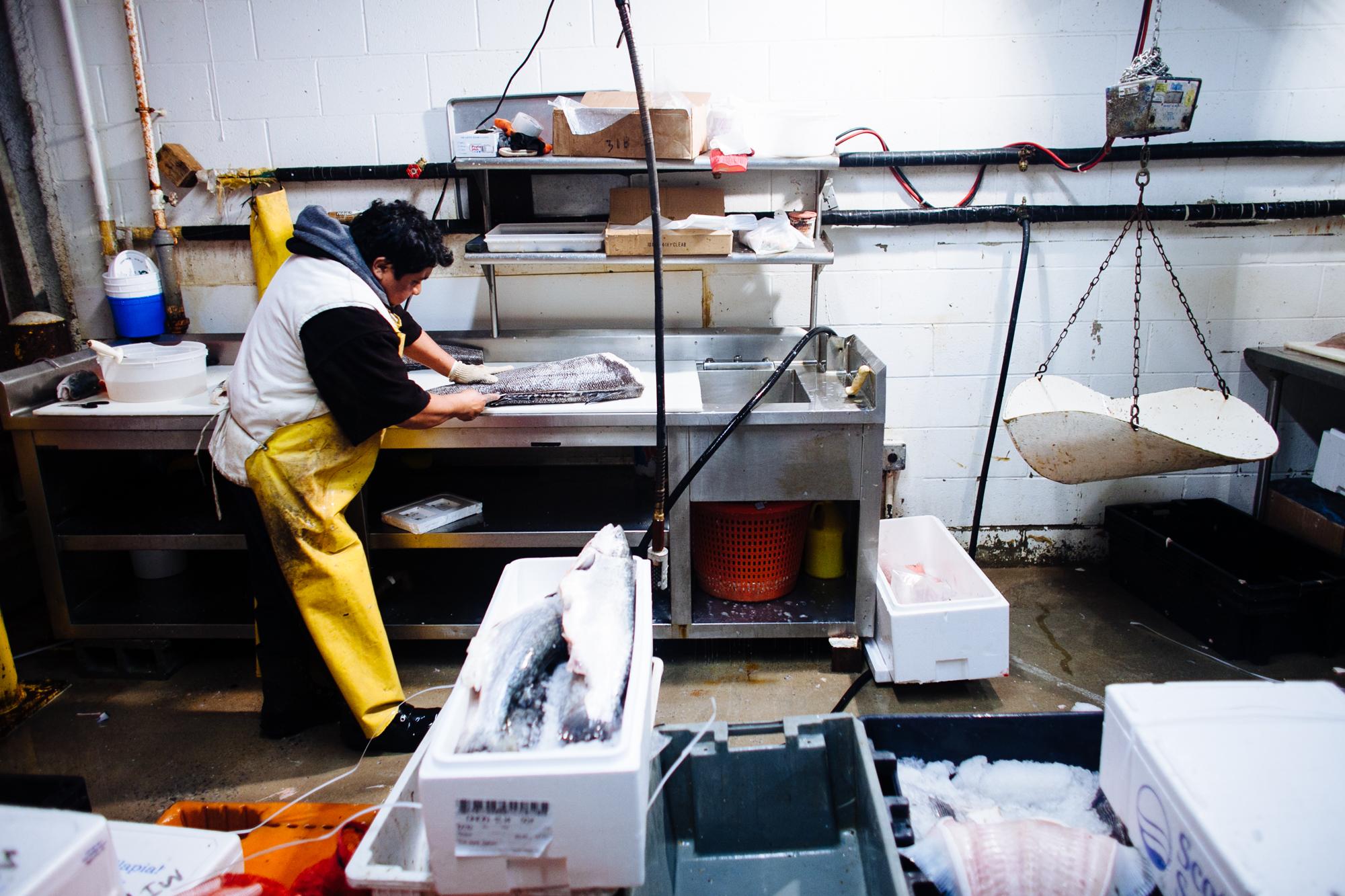 HeatherPhelpsLipton-Fish-HuntsPoint-FultonFishMarket-77.jpg
