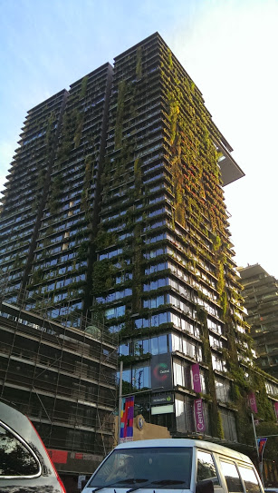 sydney overgrown building