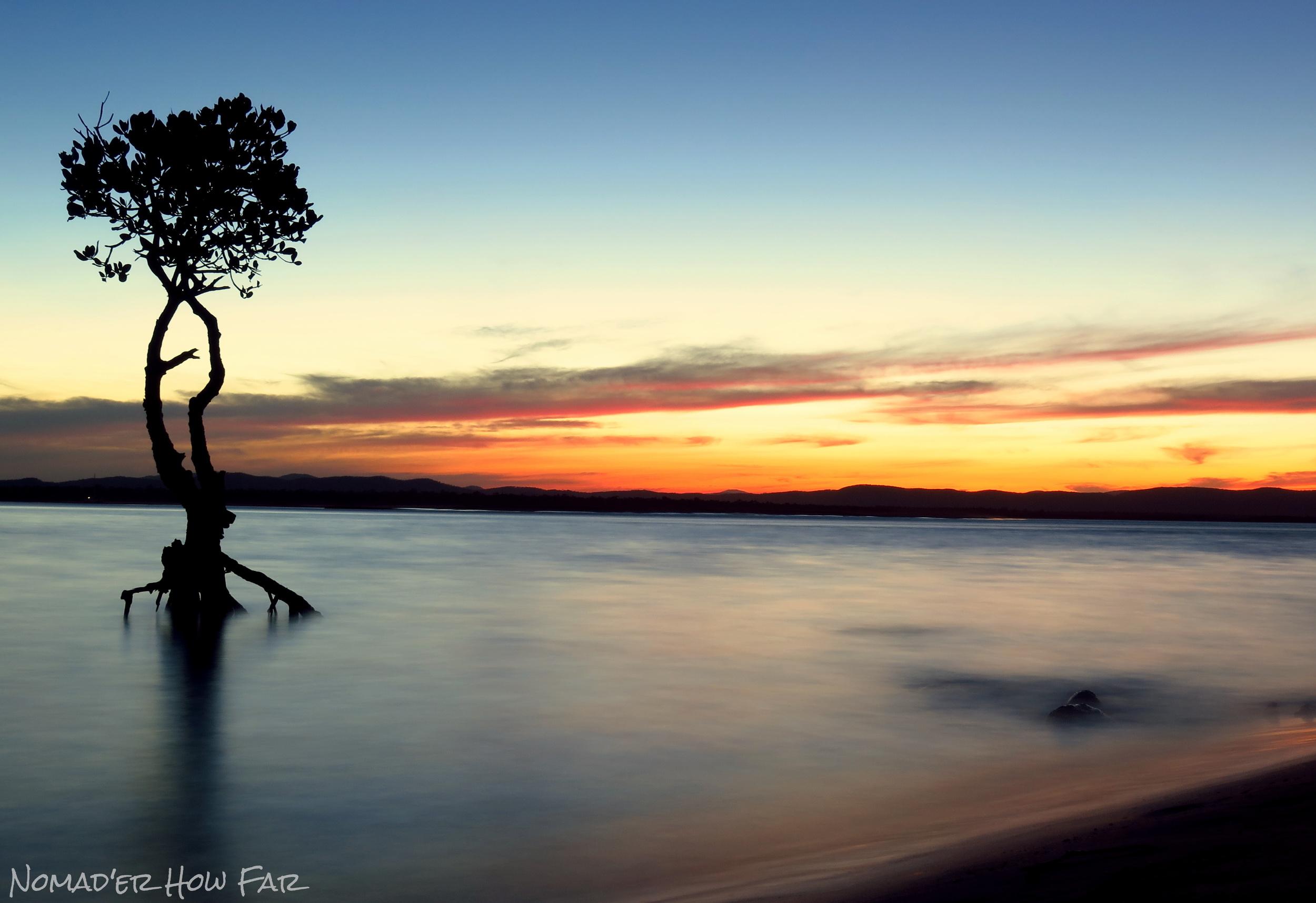 Long Exposure Mangrove & Sunset - Nomad'er How Far