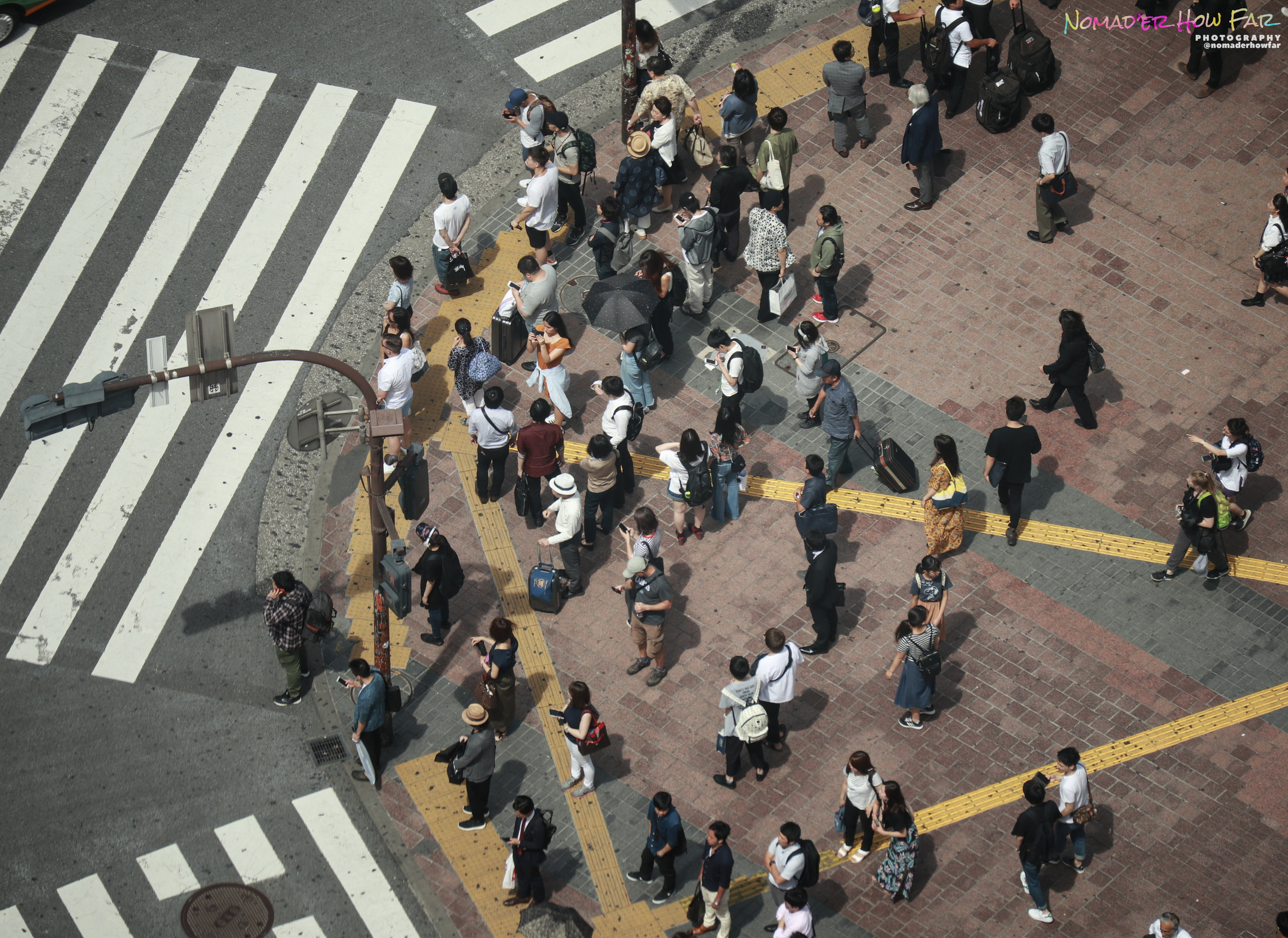 crowd shibuya