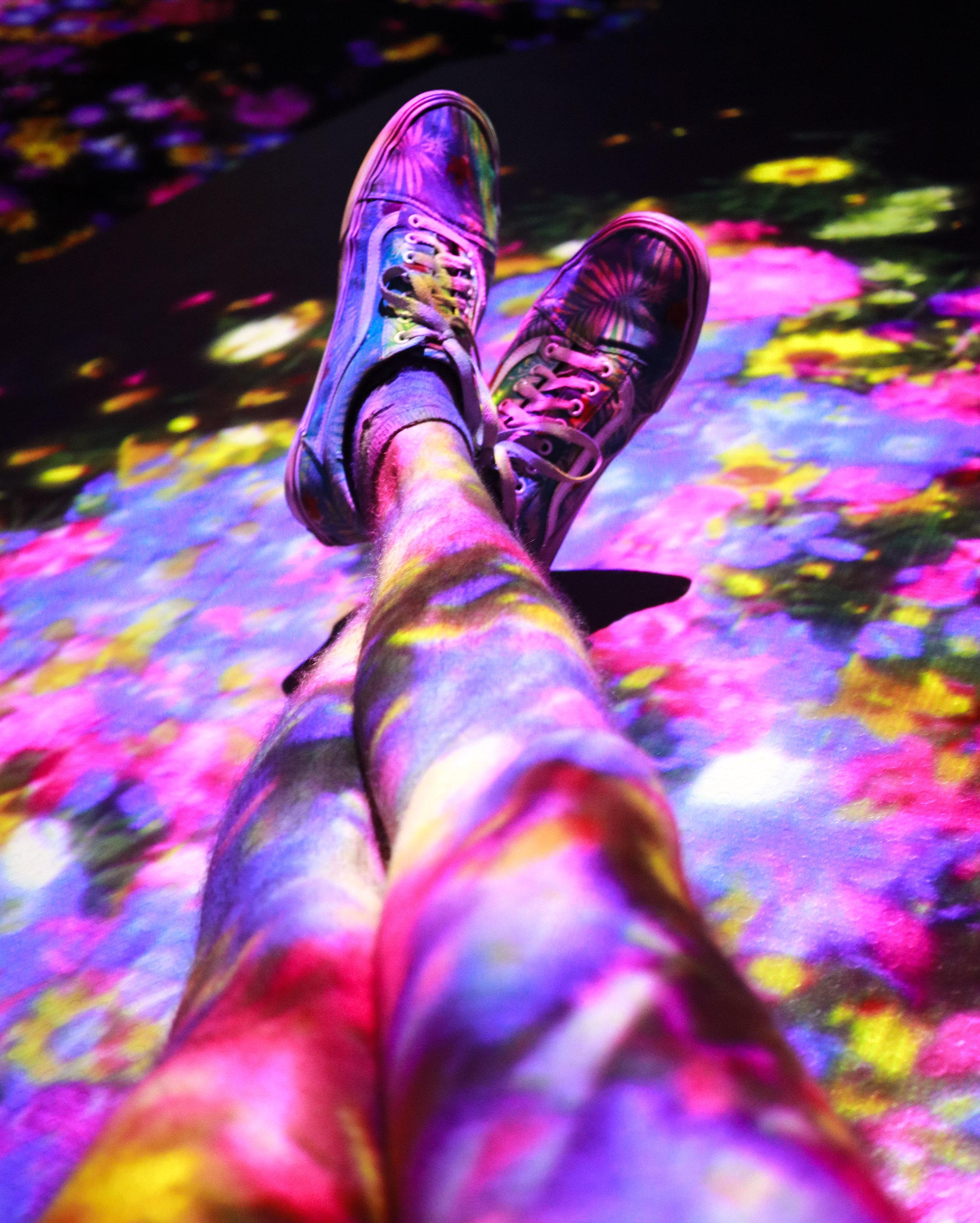 multicoloured shoes