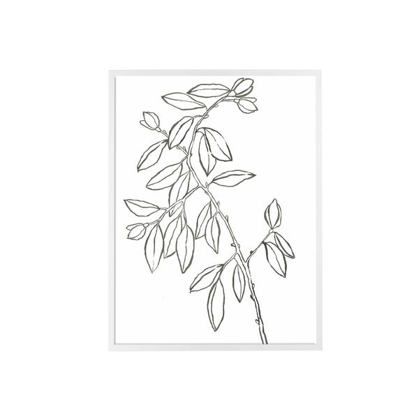 Leaf_Sketch_I_600x600_crop_center.jpg