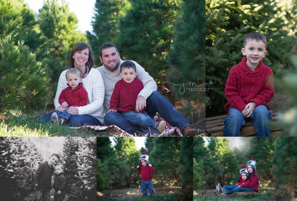 Christmas Tree Farm Family Photos.Jacqueline Marie Photography Llc Columbus Ohio Newborn