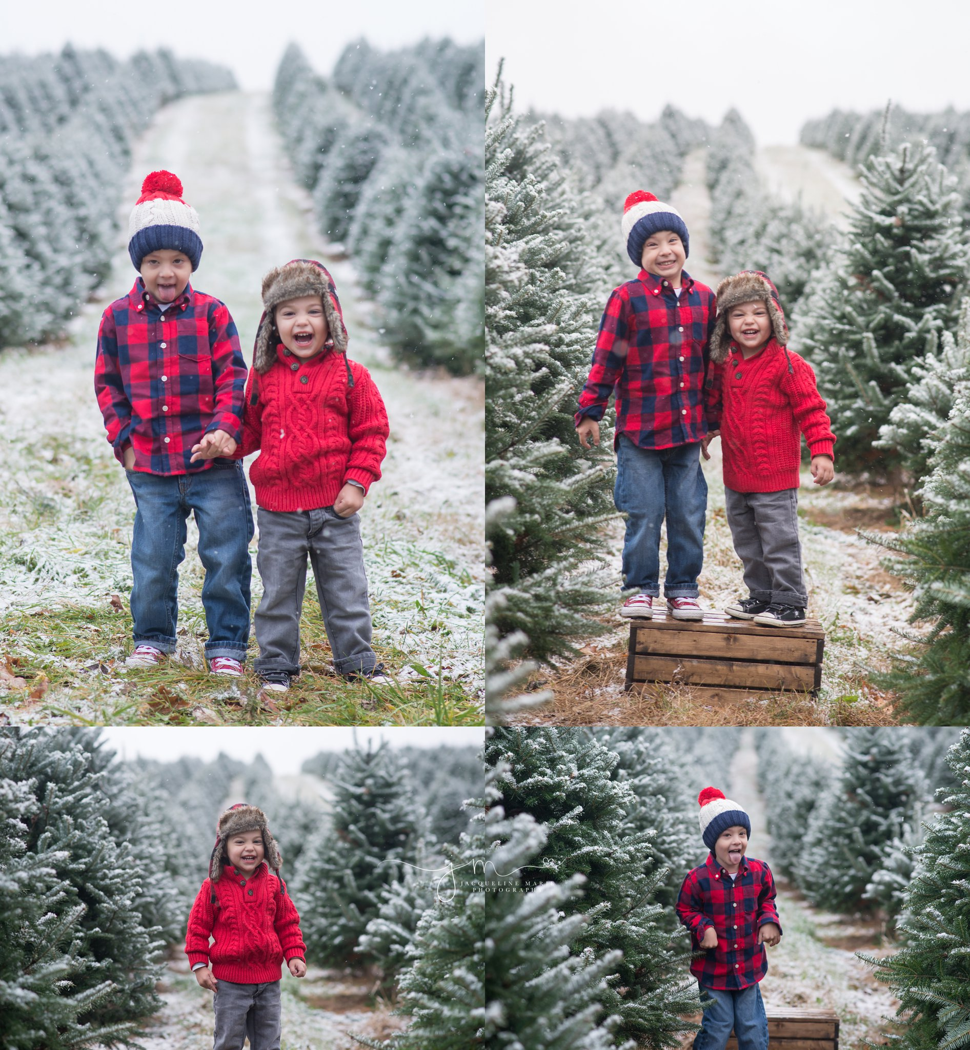 Columbus OH family photography, Christmas sessions at tree farm, outdoor Christmas photography, Columbus OH photographer, children photographer Columbus OH