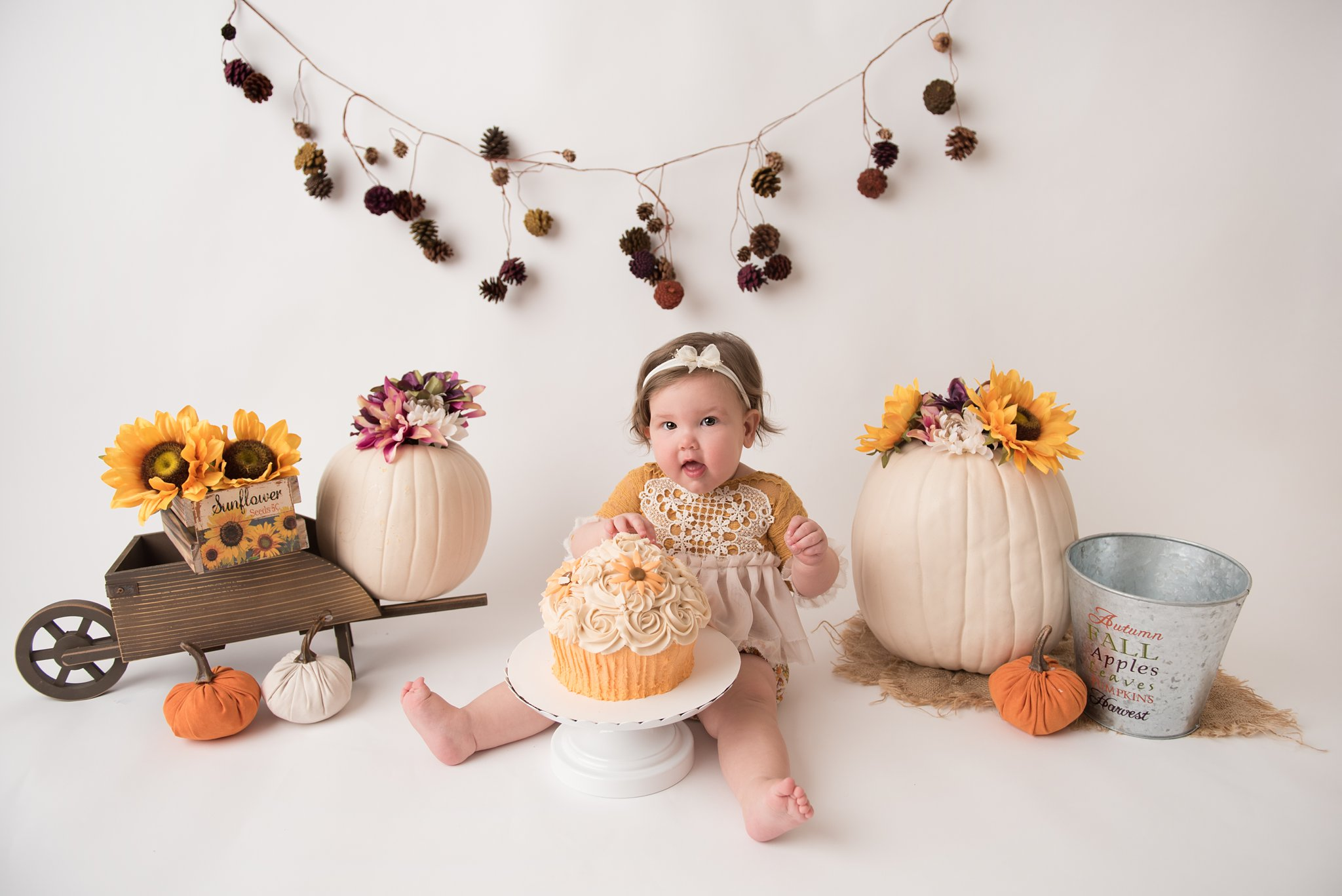 columbus ohio 1 year old celebrates first birthday with a fall and pumpkin themed cake smash with jacqueline marie photography