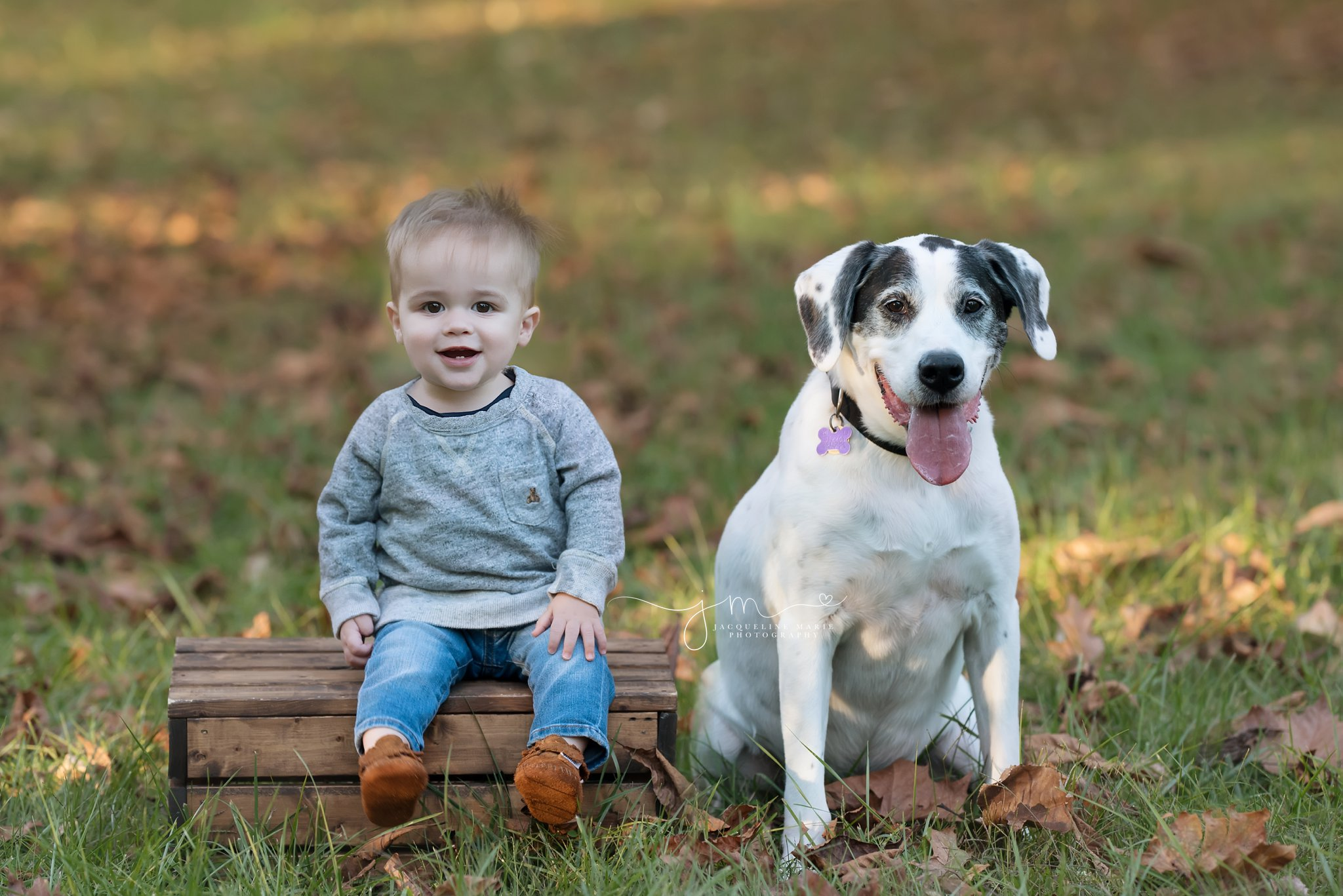toddler boy sits with his dog on a wood crate in columbus ohio