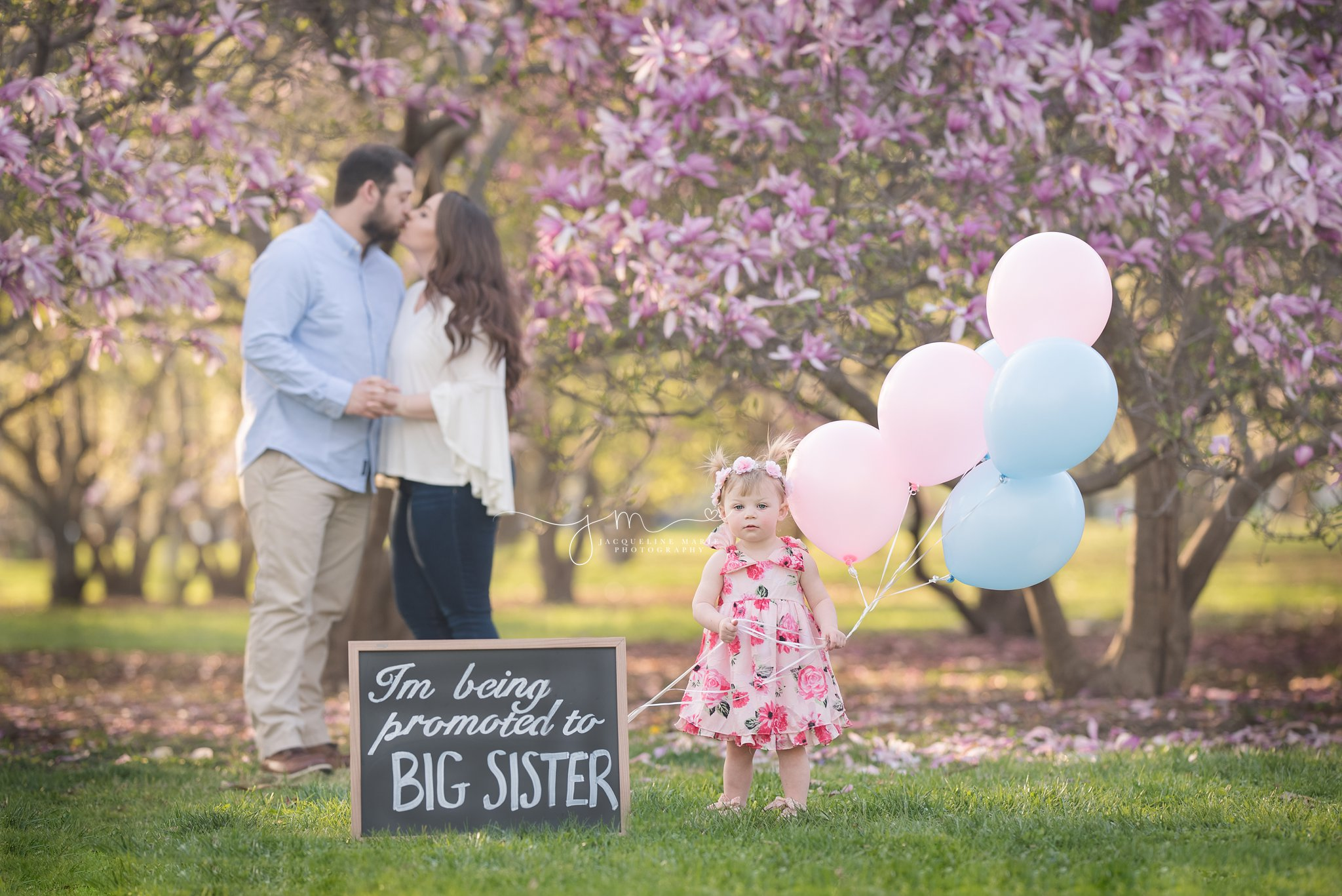 2 year old little girl holds pink and blue balloon during family pregnancy announcement session at Goodale park in columbus ohio