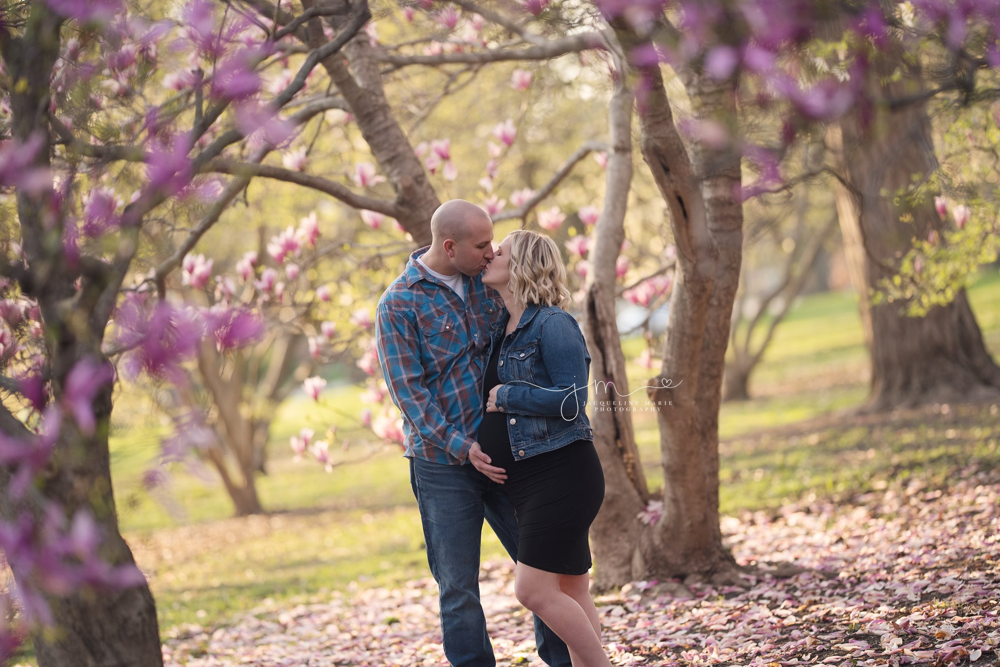 maternity photography in columbus ohio with magnolia trees in goodale park