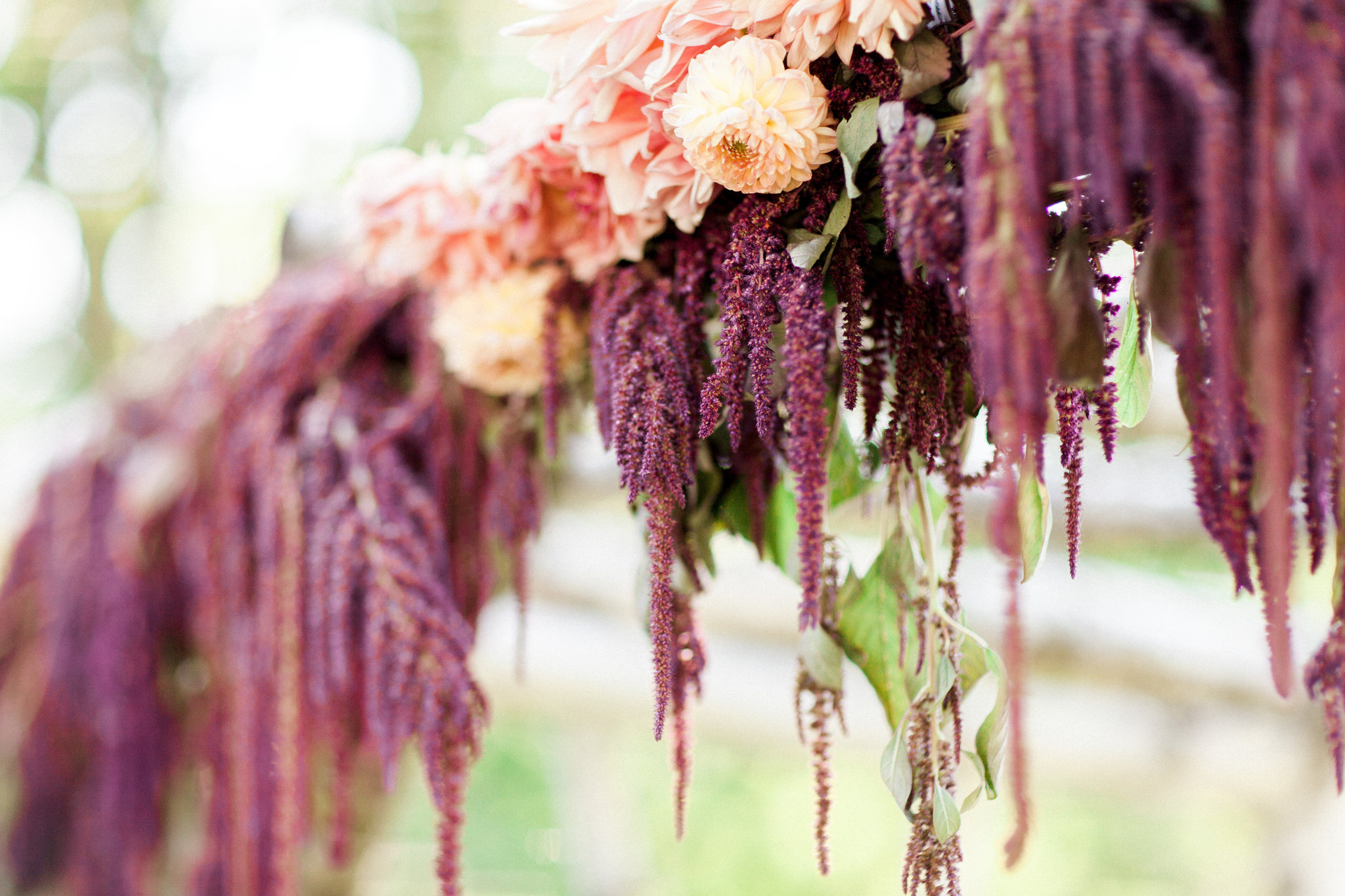 Fall wedding flowers by Nectar & Root | Wedding floral design services in Burlington, Vermont (VT) | Autumn arbor with peach dahlias, marsala hanging amaranth