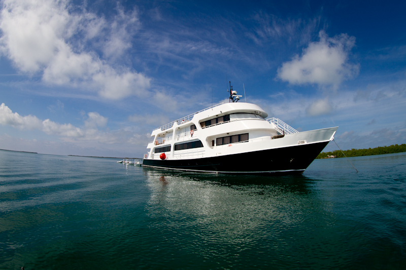 The Avalon Fleet ll, our home for the time in Jardines de la Reina. Unbelievable luxury, with the best staff and service imaginable.