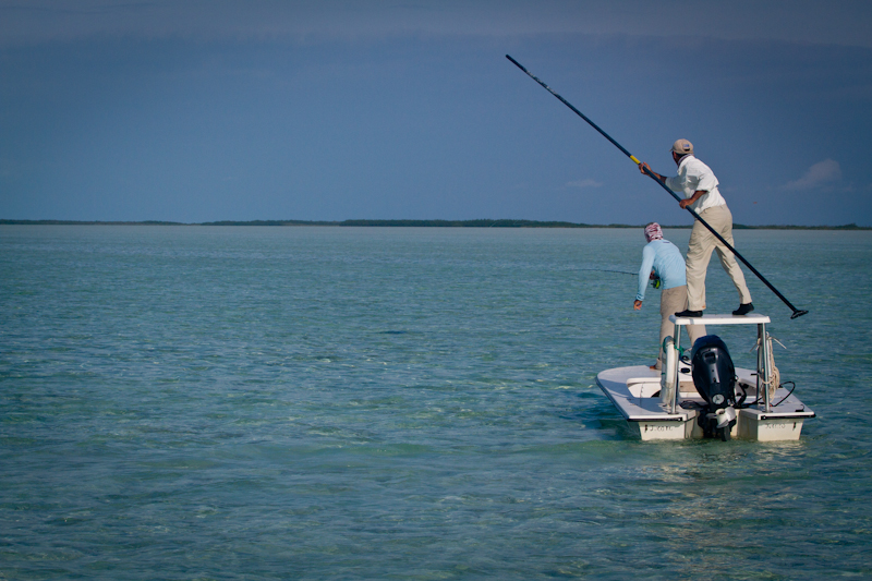 A large percentage of the Permit you see at Cayo Cruz are in the company or Ray's. You can see the dark shape of the Ray in this image, with the guide positioning the boat for the angler to place his fly accurately.