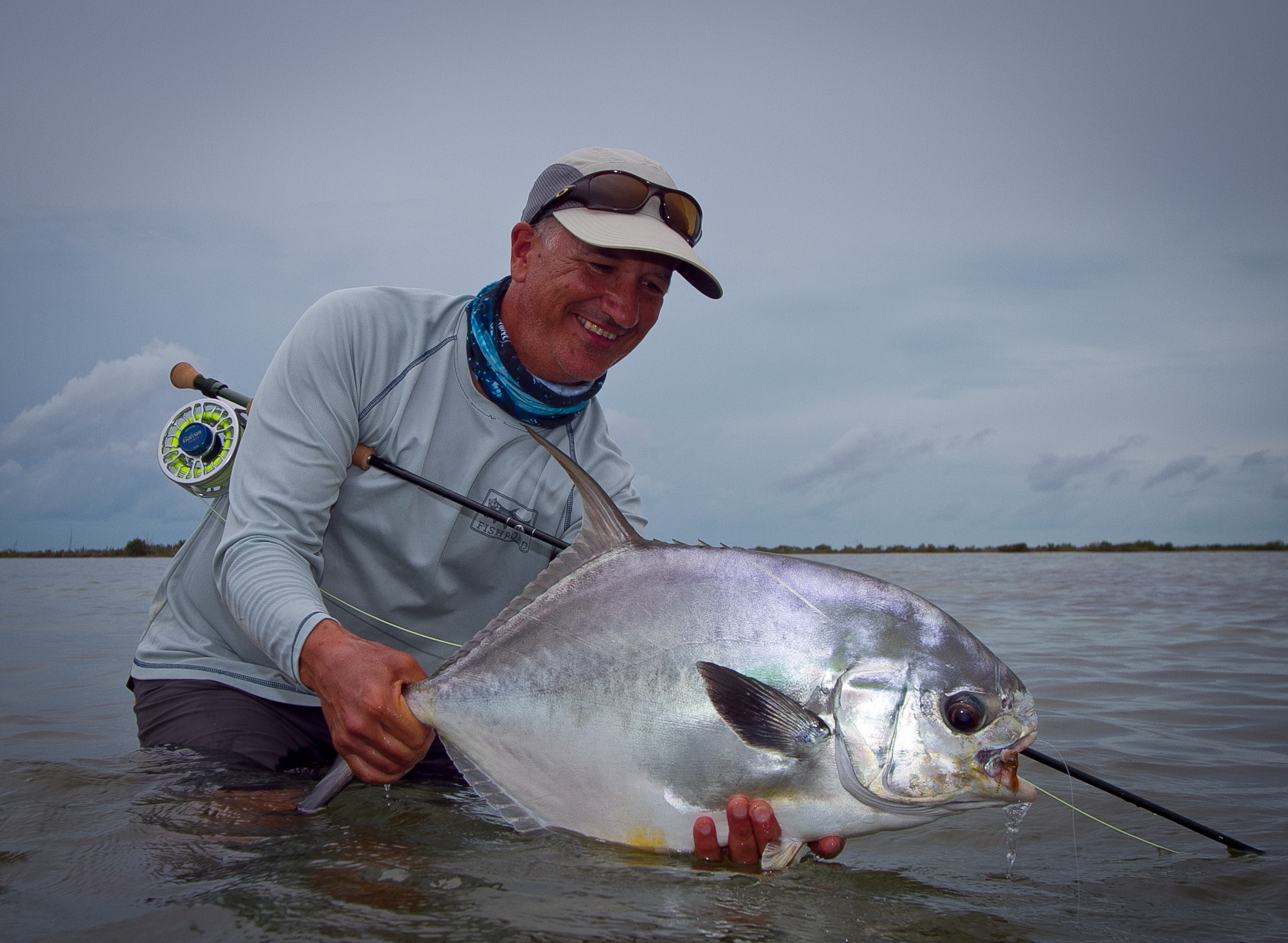 Cuban Palometa (Permit) from Zapata