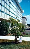 Engineering Office-MR-Innoveers,LLC