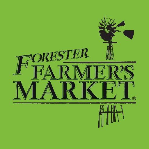 forester1.jpg