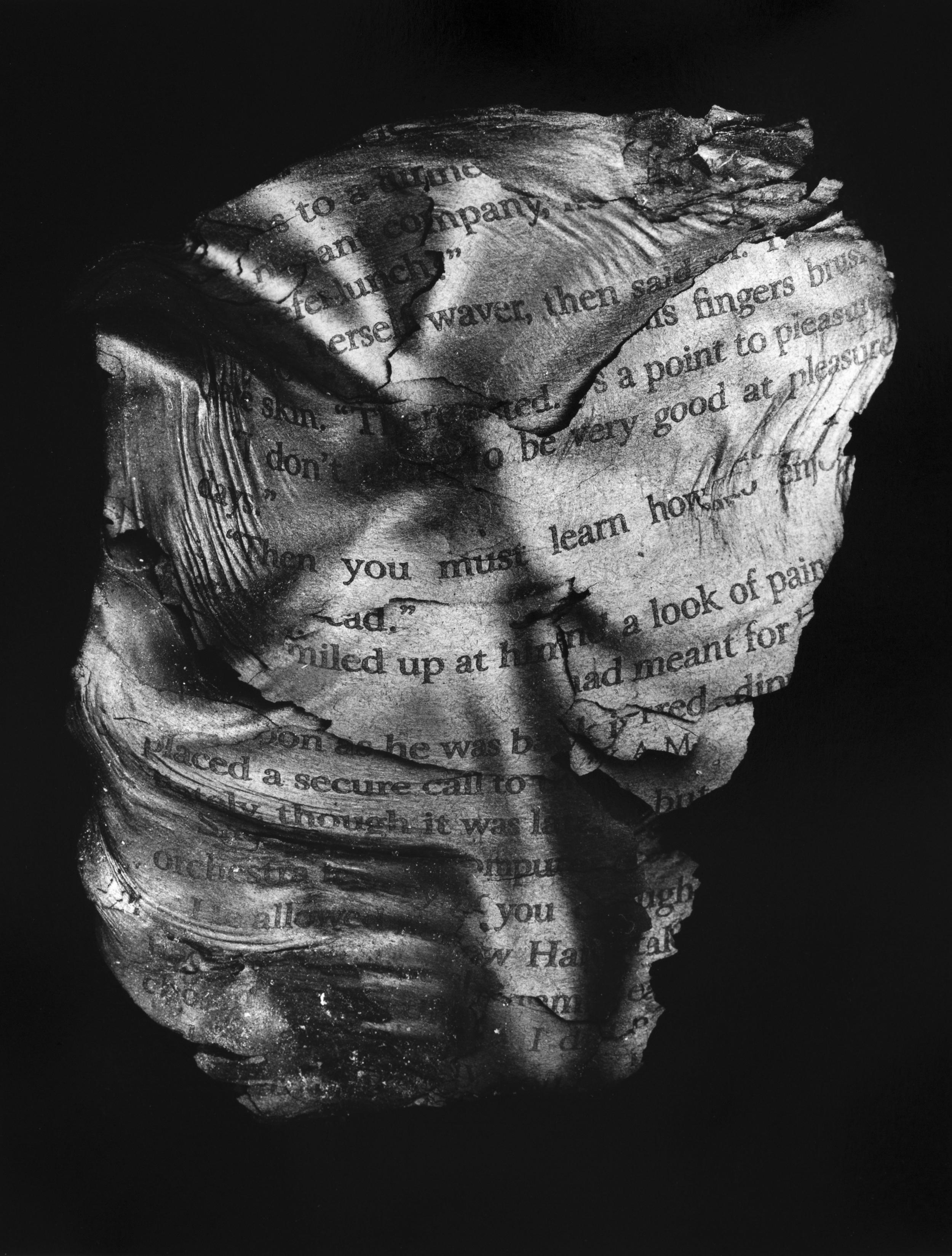 """Resurrected Form No.8, 13x10"""", Toned Silver Gelatin Print, 2014"""
