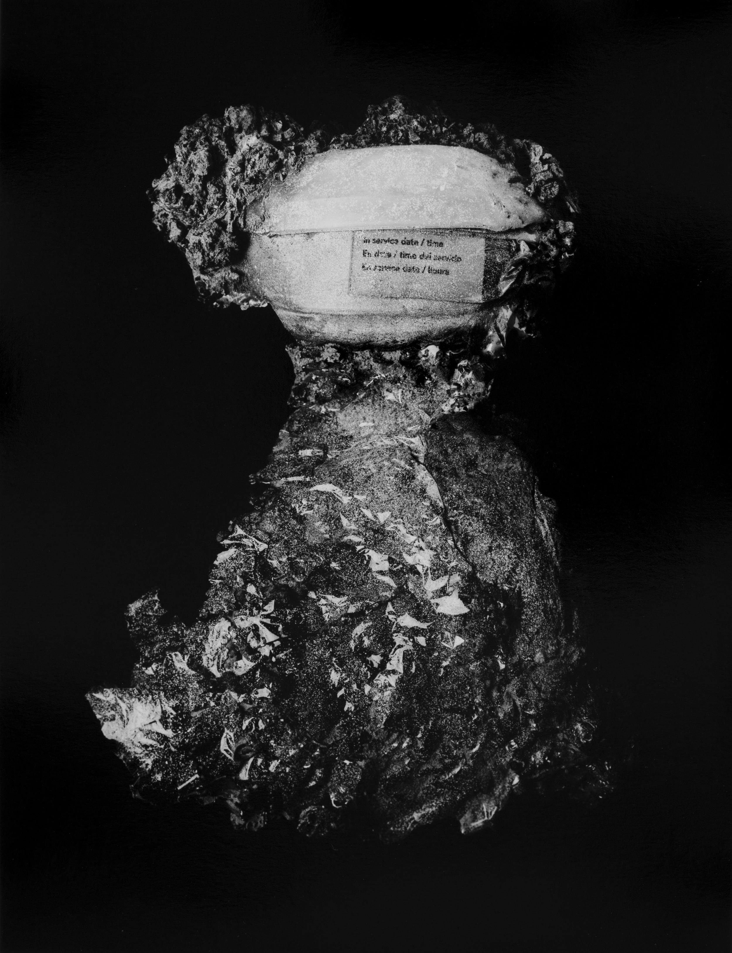"""Resurrected Form No.6, 13x10"""", Toned Silver Gelatin Print, 2014"""