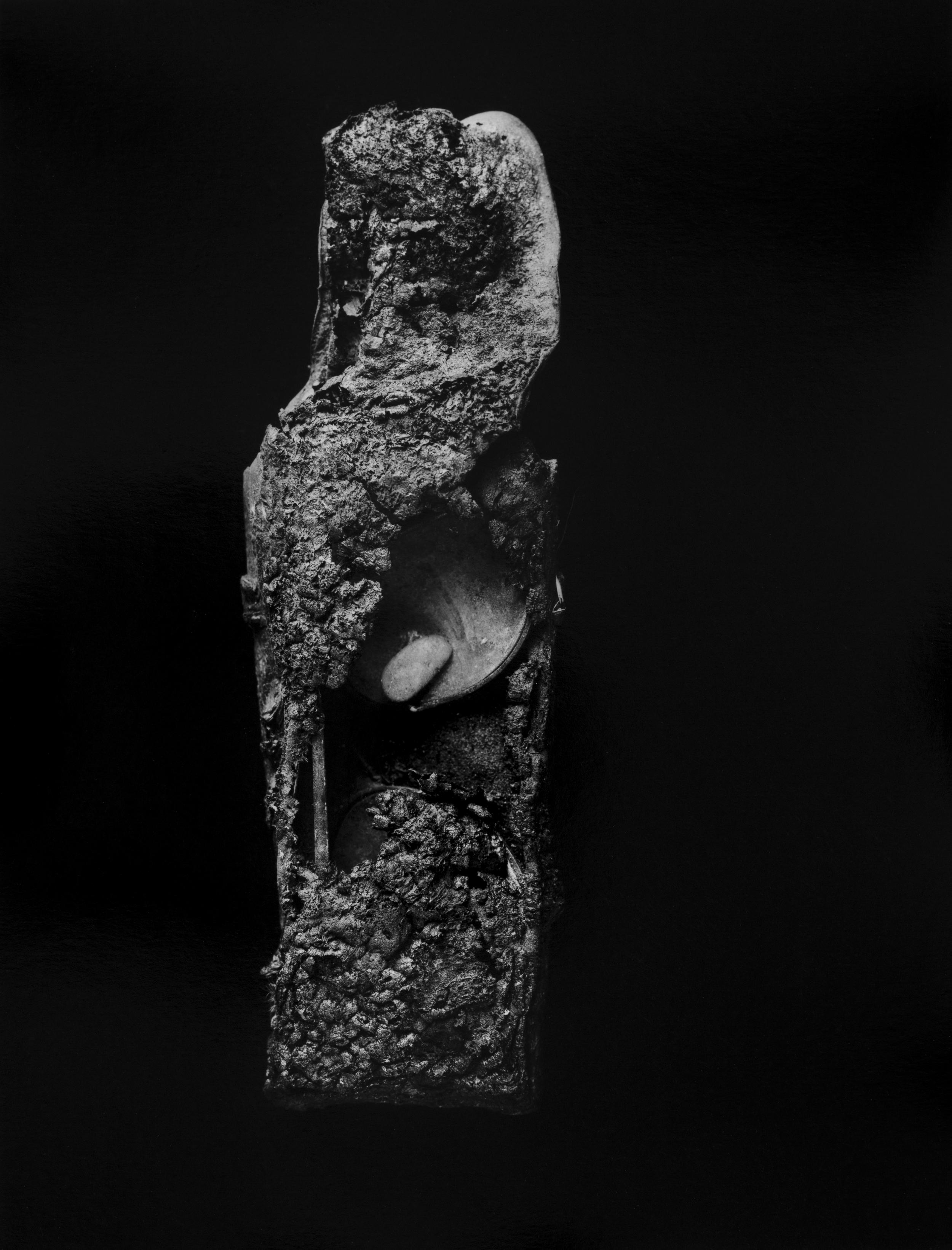 """Resurrected Form No.5, 13x10"""", Toned Silver Gelatin Print, 2014"""