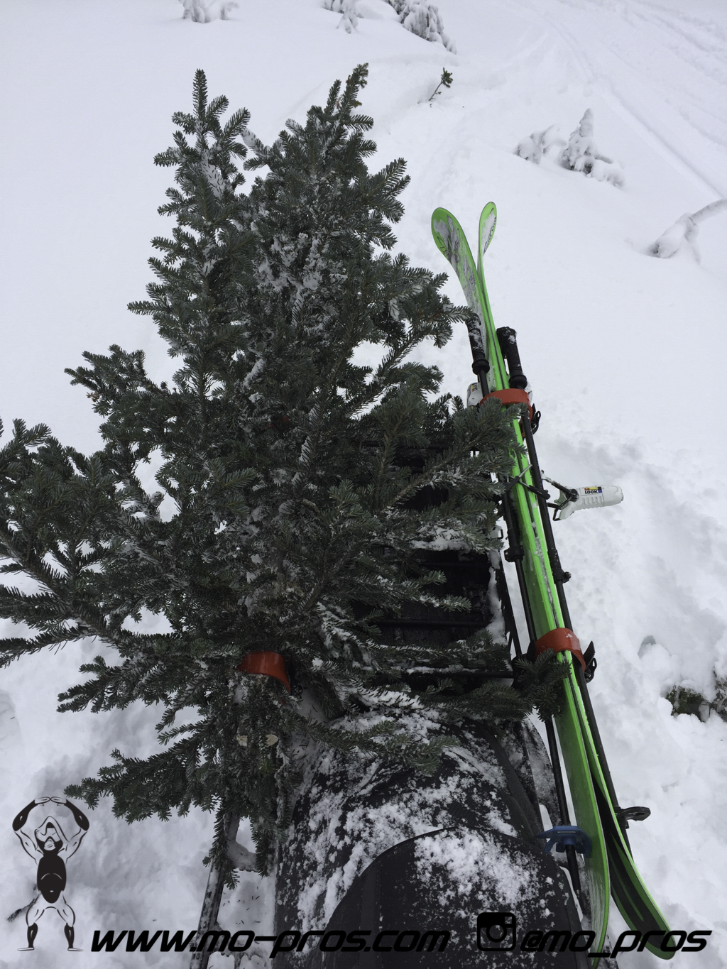 71_Backcountry _Backcountry United_CFR rack_Cheetah Factory Racing_gas Rack_Gear_Gun Rack_LinQ Snowboard Ski_Rack_Ski_Snowbike_snowboard_Snowboard rack_Snowboarding_Snowmobile_snowmobile bag_timbersl.jpg