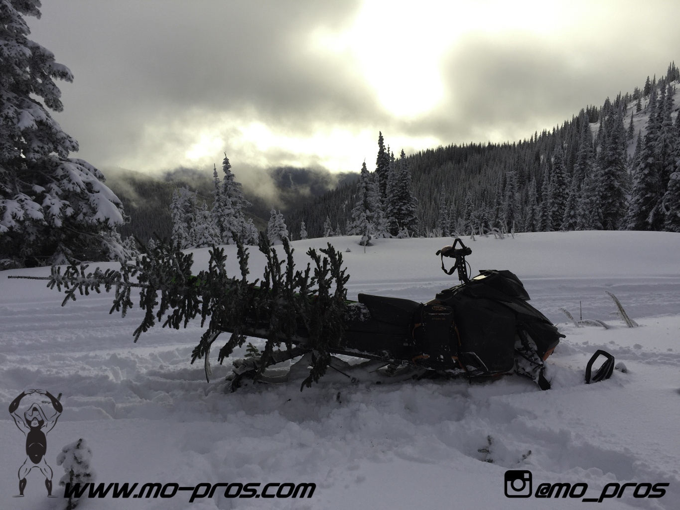 74_Backcountry _Backcountry United_Rack_Ski_Snowbike_Timbersled Rack_Tsaina Rack_CFR rack_Cheetah Factory Racing_gas Rack_Gear_Gun Rack_LinQ Snowboard Ski_Snowboard rack_snowboard_Snowboarding_snowmo.jpg