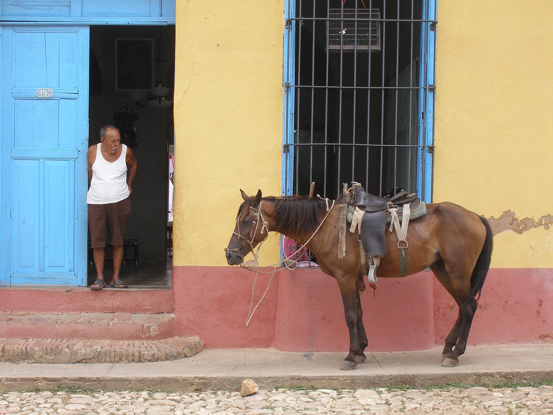 Cuba_Horse_Parked_Outside_Trinidade.jpg