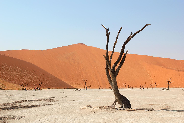 Africa_Deadvlei_Namibia.jpg