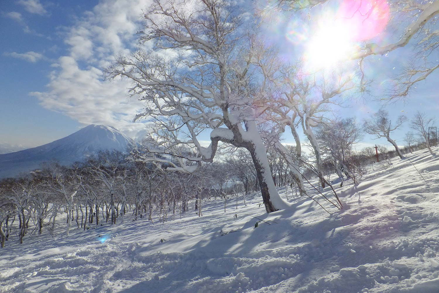 Japan_Niseko_Mount-Yotei.jpg