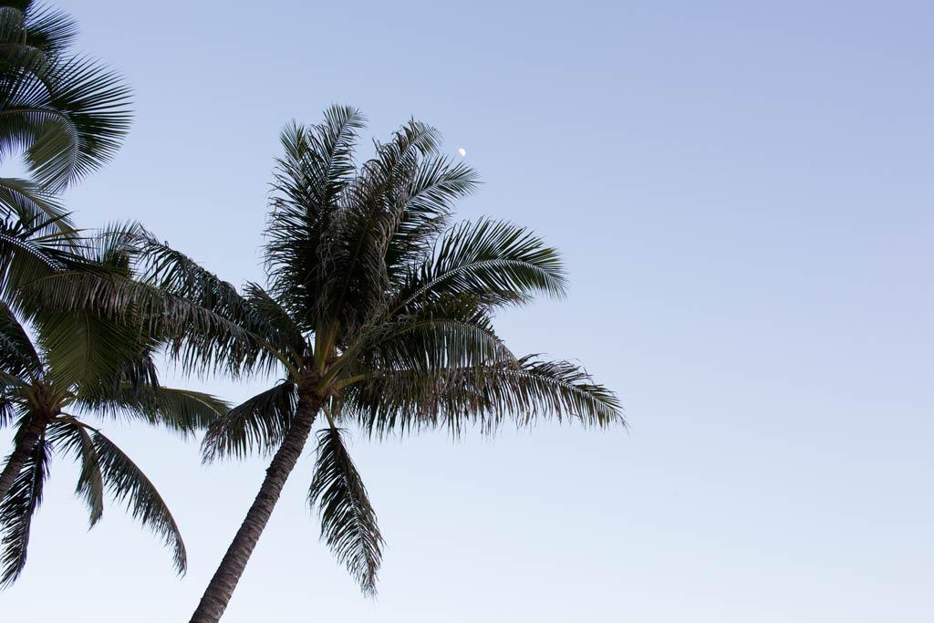 Grays Beach Waikiki