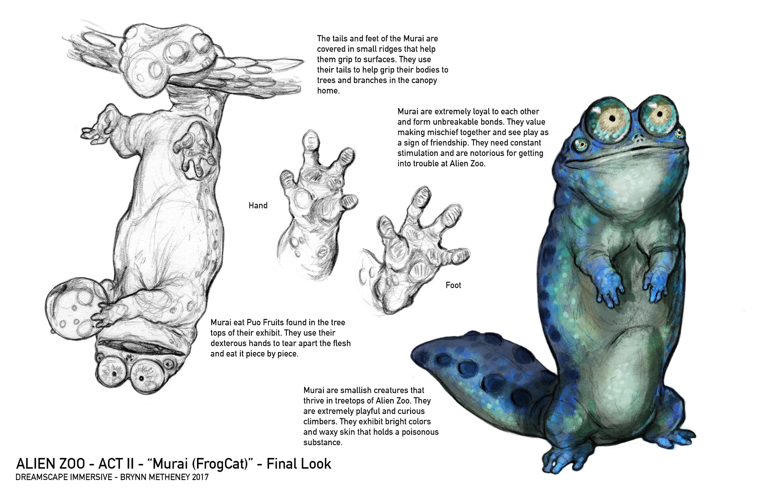 AlienZoo-FrogCat-FInalLook-Blue-BrynnMetheney.jpg