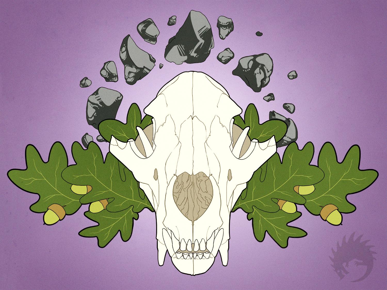 bear skull web.jpg