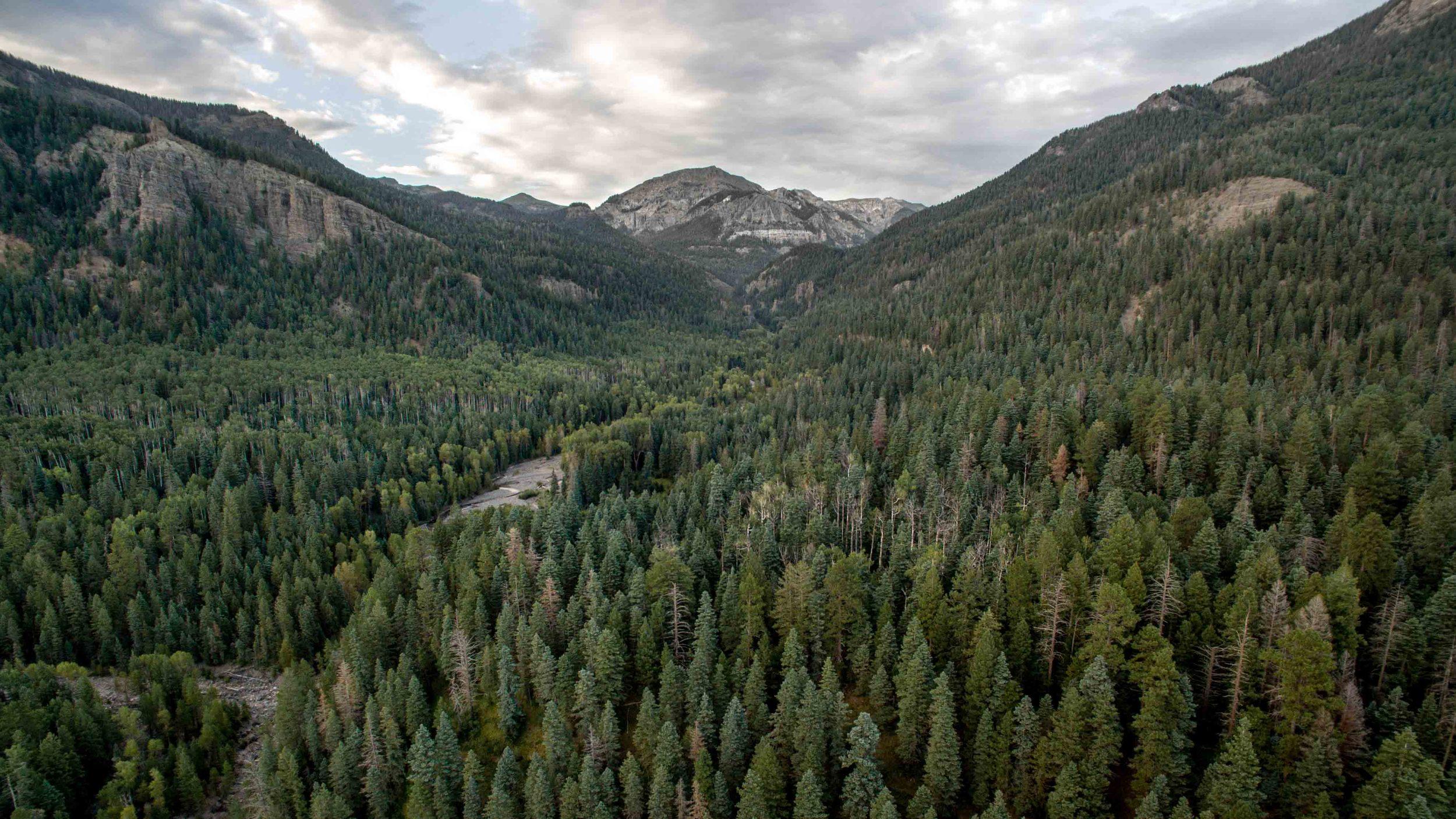 Blanco Basin, Colorado