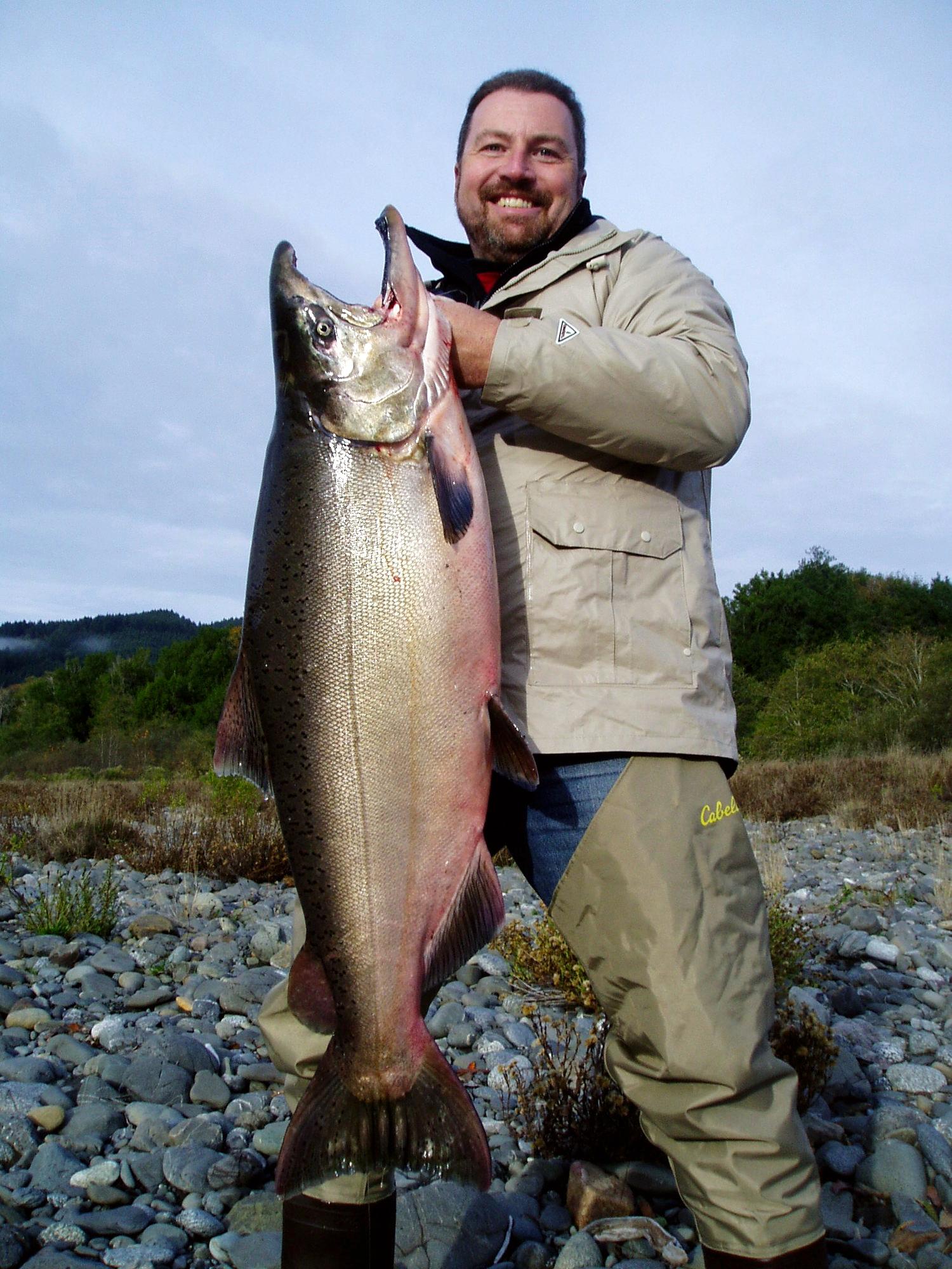 Huge coastal King salmon in fall