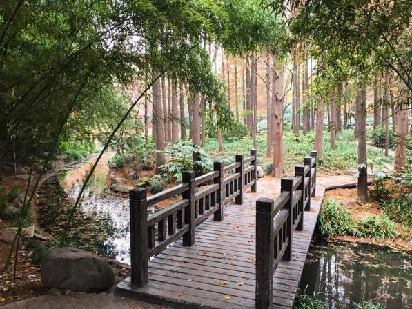 Beautiful park near the Shanghai Museum.Image via  @lweatherbee