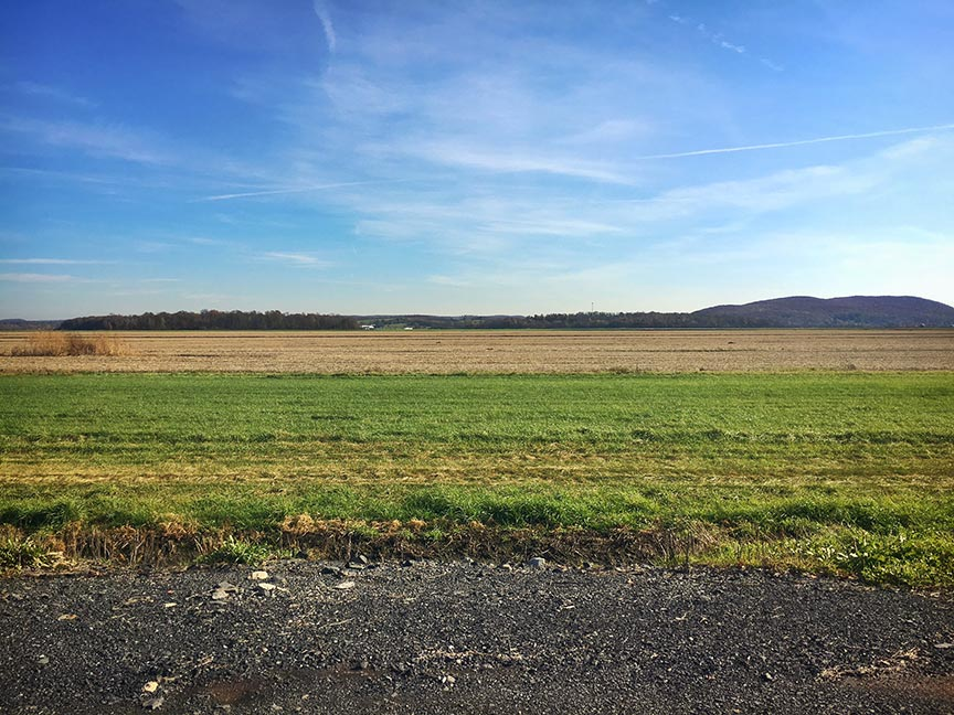The famed black dirt region in upstate New York. After the onions are harvested, they plant cover crops to improve soil health and prevent wind erosion of the precious black dirt.