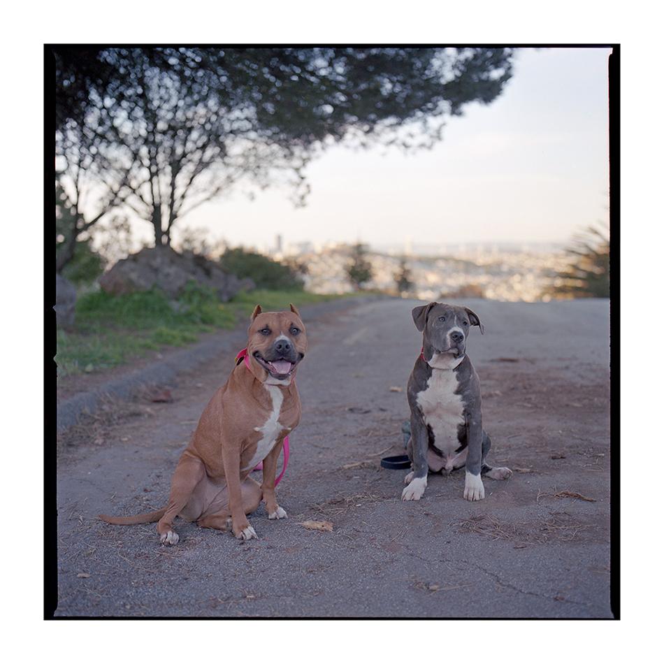 Roxy & Rhino