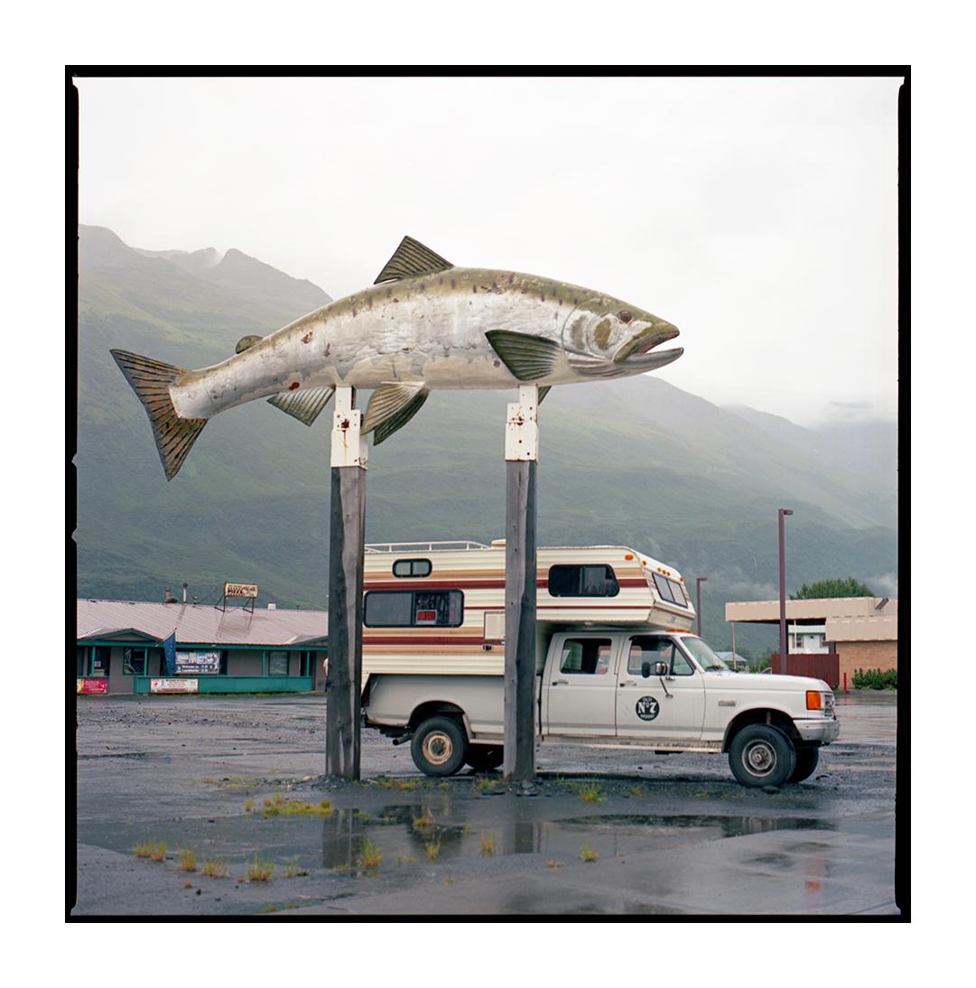 The Salmon Capital