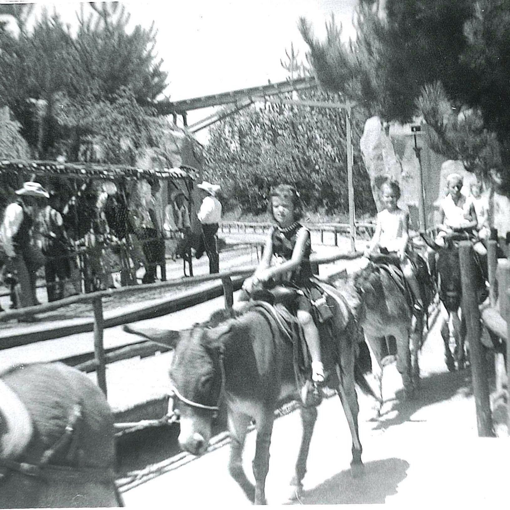 Mule Ride through Natures Wonderland 1959